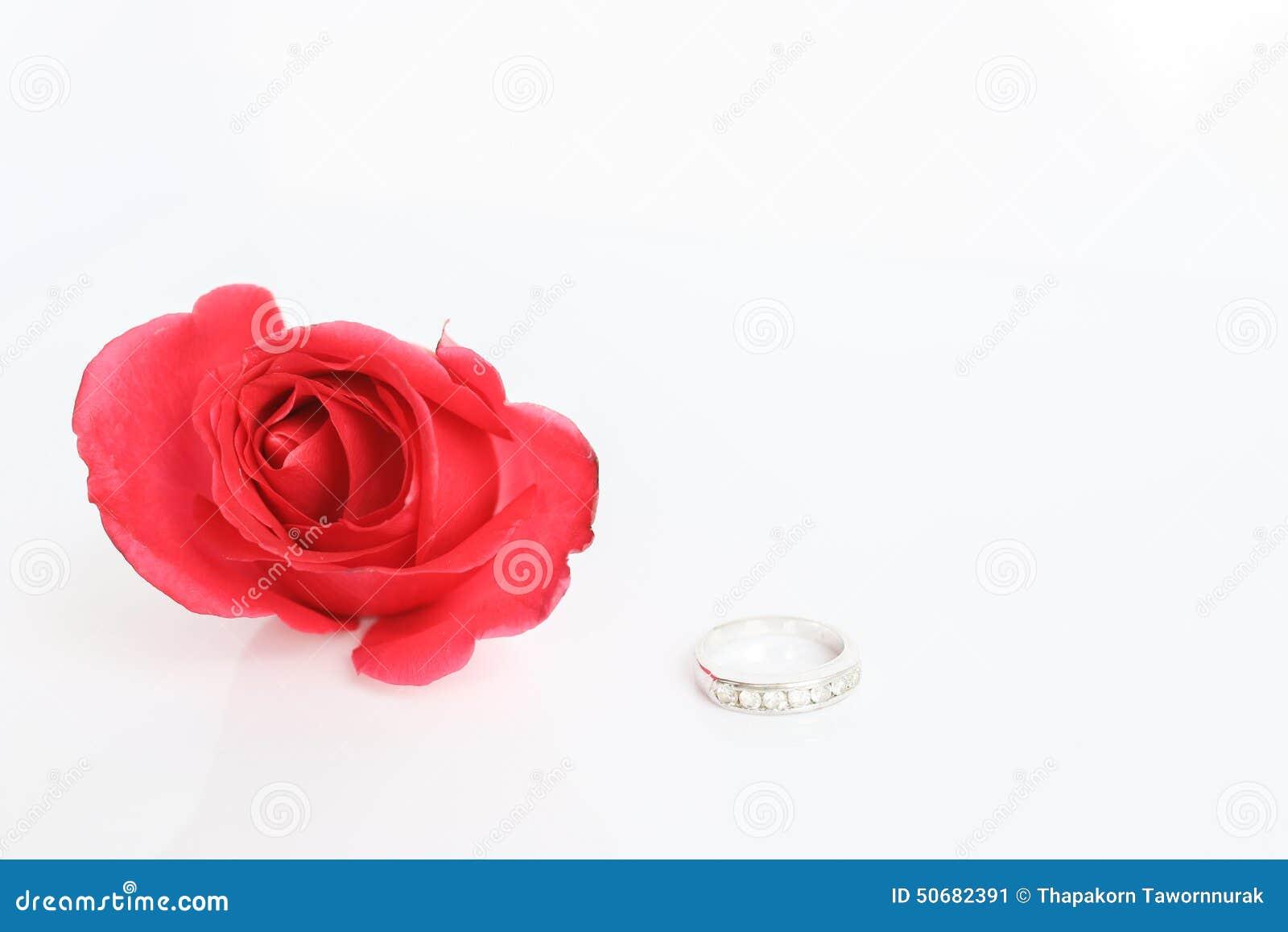 Download 与圆环的红色玫瑰在白色背景 库存图片. 图片 包括有 查出, 本质, 特写镜头, 珠宝, 婚姻, 统一性 - 50682391