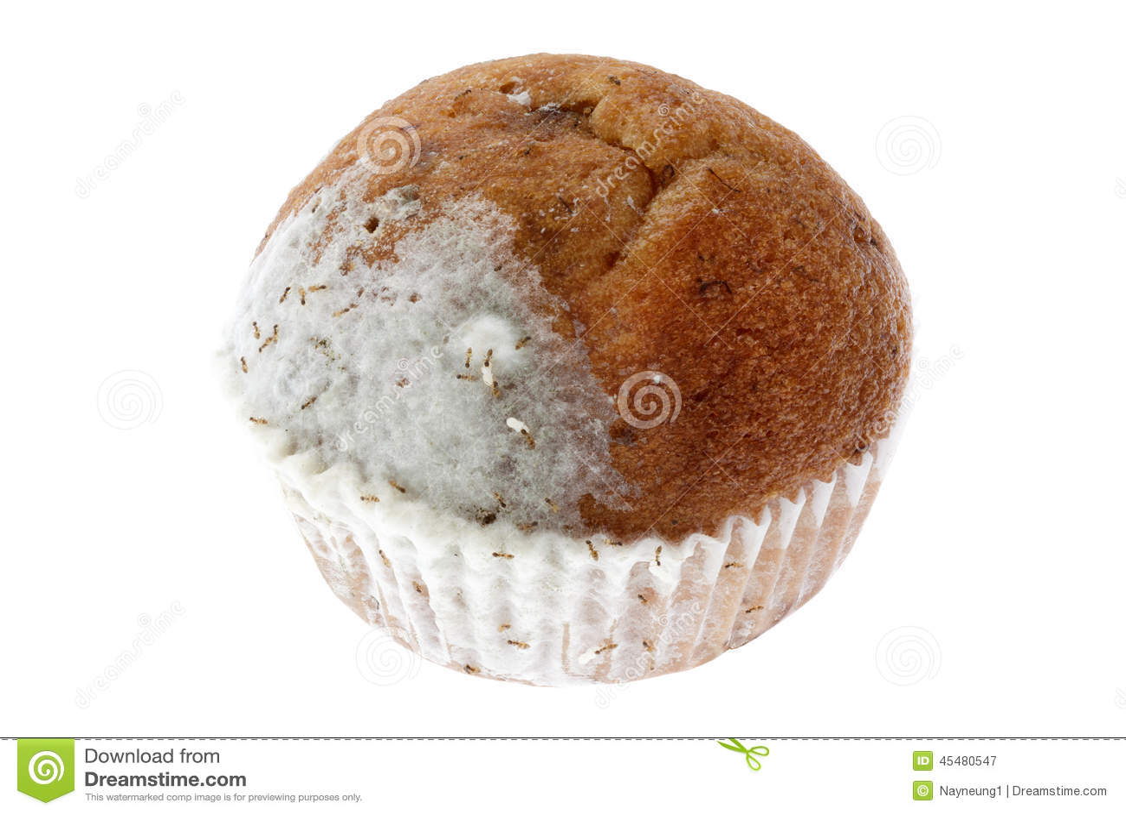 与在白色隔绝的成群移动蚂蚁的发霉的香蕉松饼蛋糕