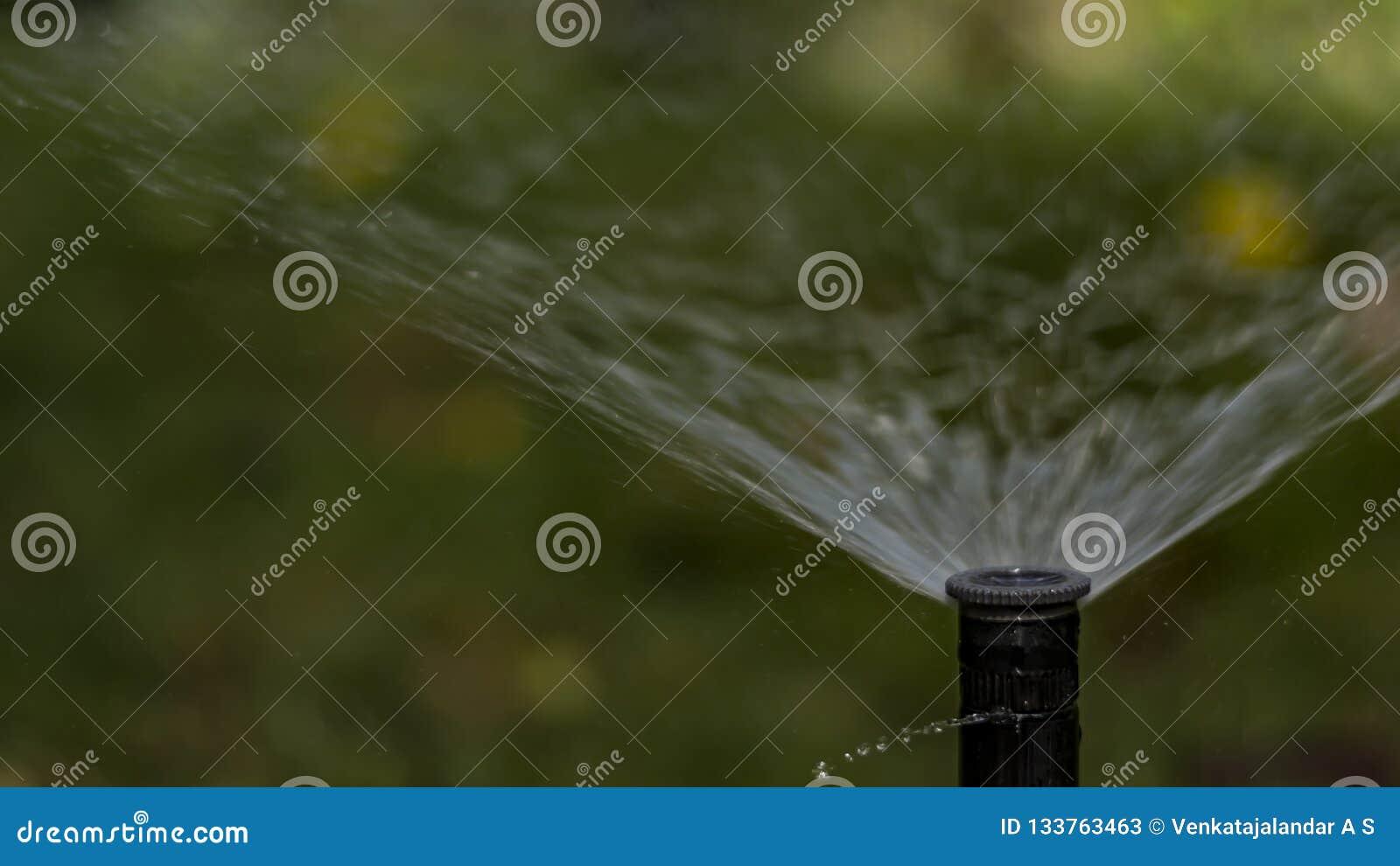 与在草土地的强力量-盆射的水喷水隆头