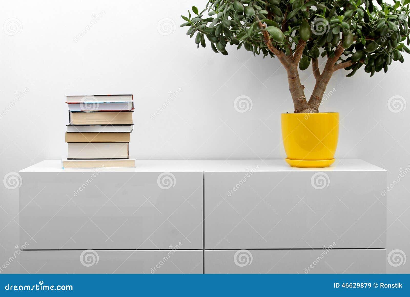 与堆的白色洗脸台书和花盆在明亮的简单派内部