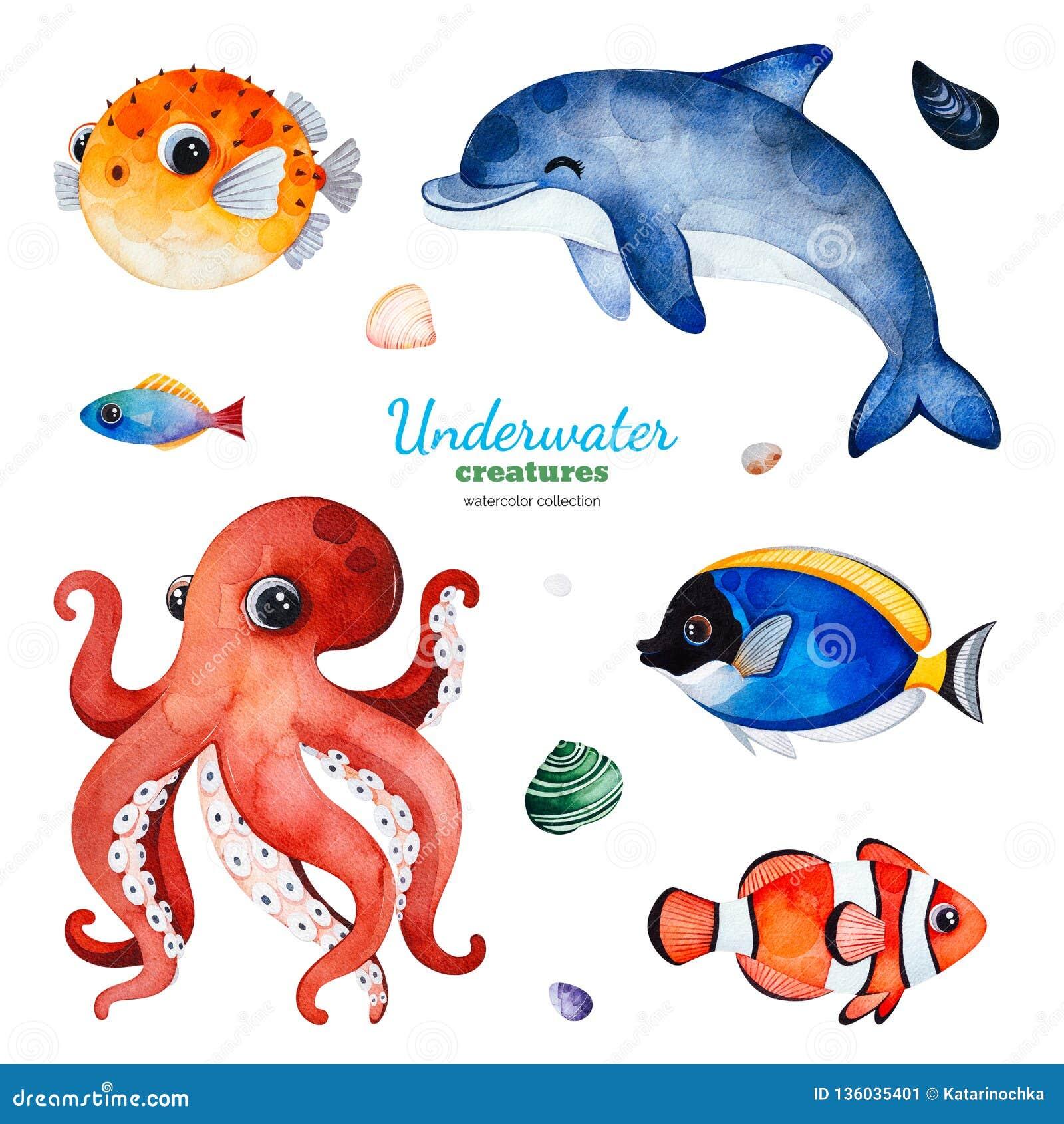 与多彩多姿的珊瑚鱼的水彩汇集 壳,海豚,章鱼