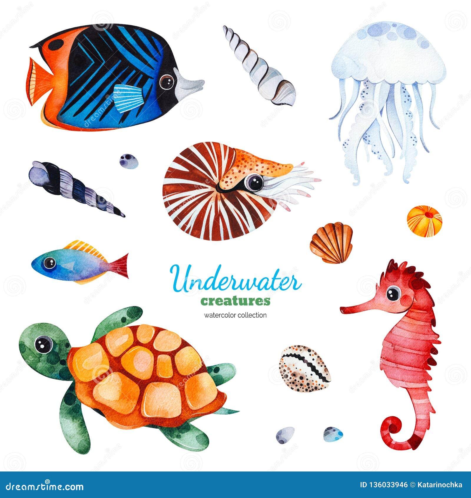 与多彩多姿的珊瑚鱼的水彩汇集