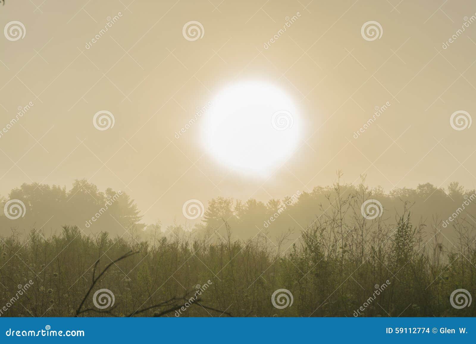 与大雾的日出