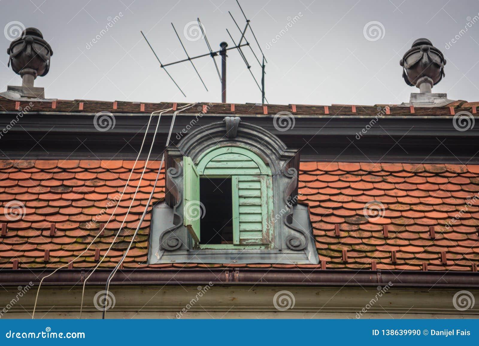 与天线和导线的一个冠屋顶窗口