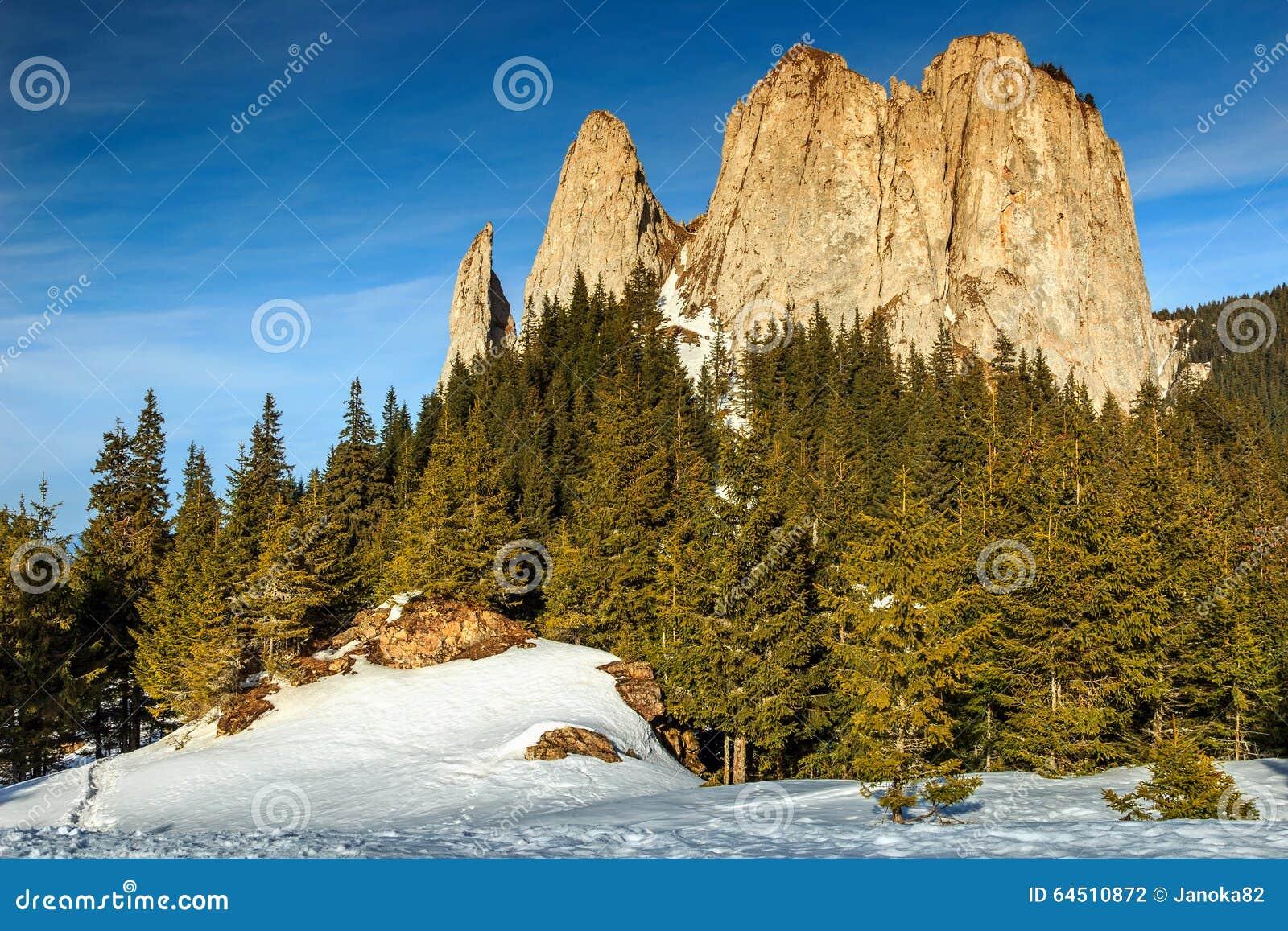 与孤独石,喀尔巴汗,罗马尼亚,欧洲的冬天风景图片