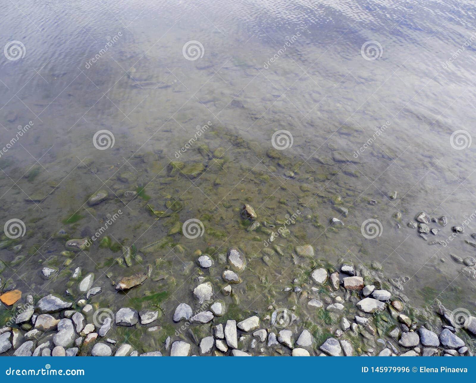 与小卵石和大海的岸
