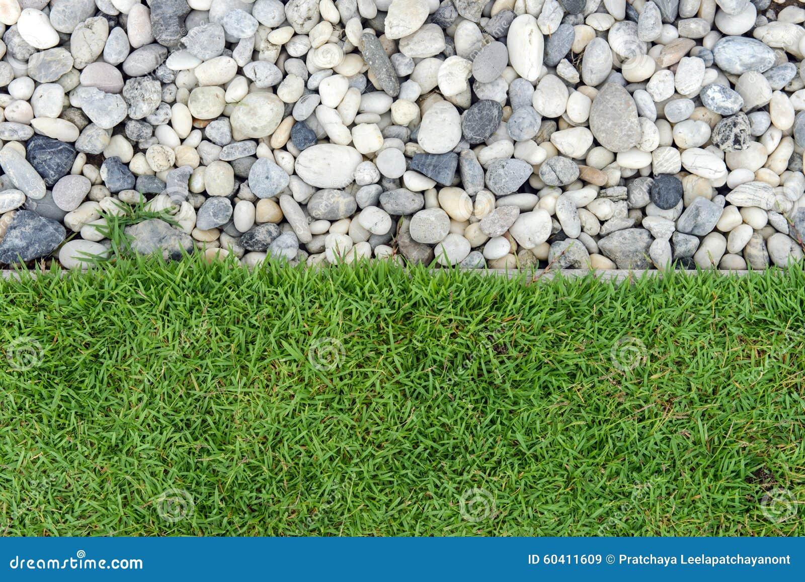 与小卵石的绿草,石头和草在庭院里,与岩石,与草的小卵石的草