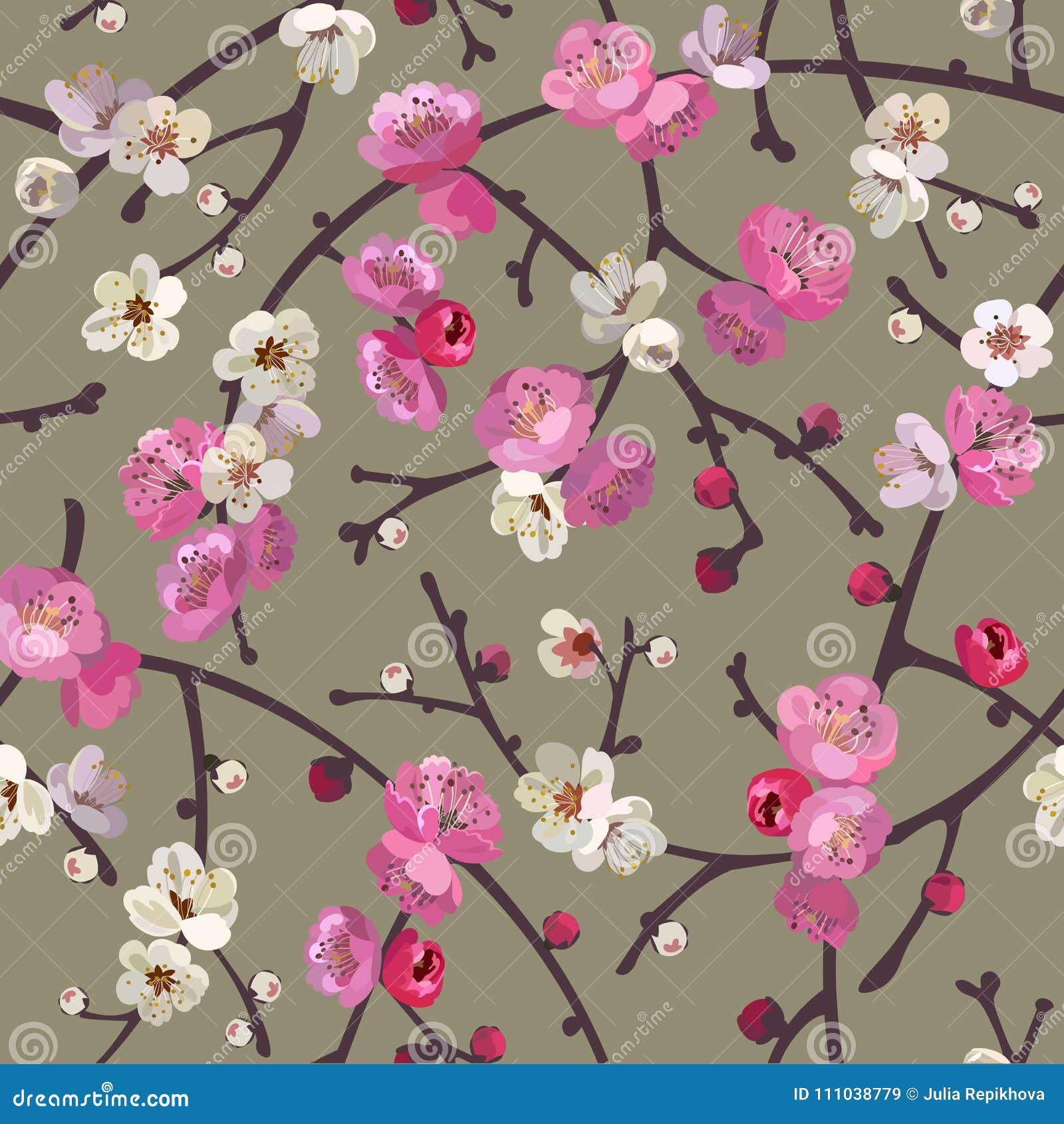 与开花的佐仓分支的无缝的样式 樱花花卉背景