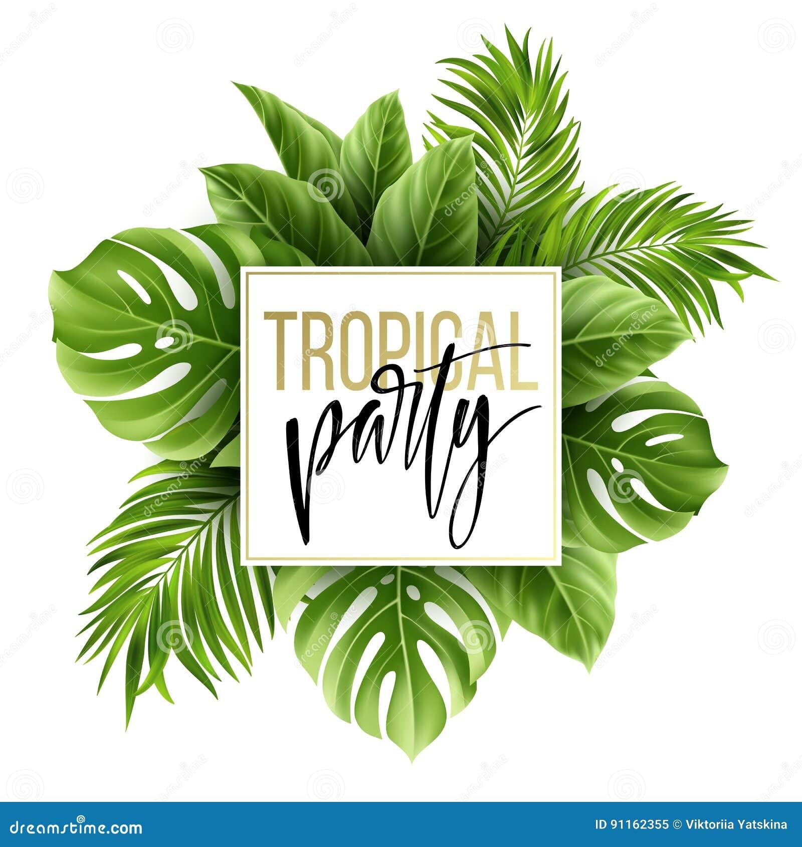 与异乎寻常的棕榈叶的夏天热带叶子背景 党飞行物模板 手写字法 向量