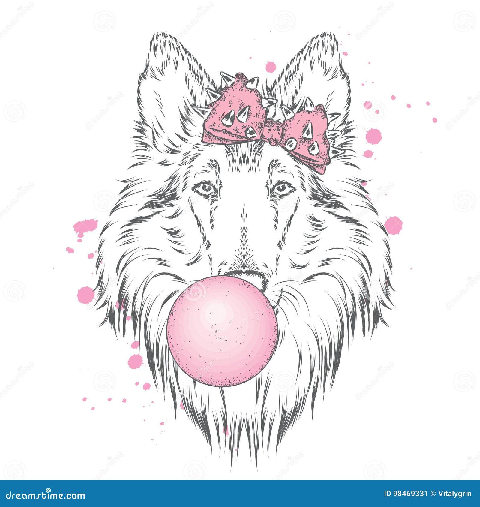 与弓的一条美丽的狗吹反刍食物 纯血统小狗 大牧羊犬