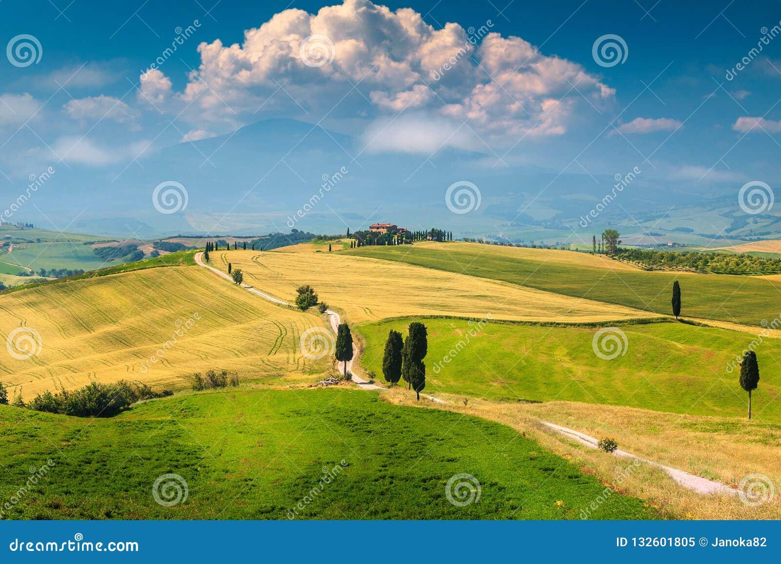 与弯曲的路和柏,意大利,欧洲的美好的托斯卡纳风景