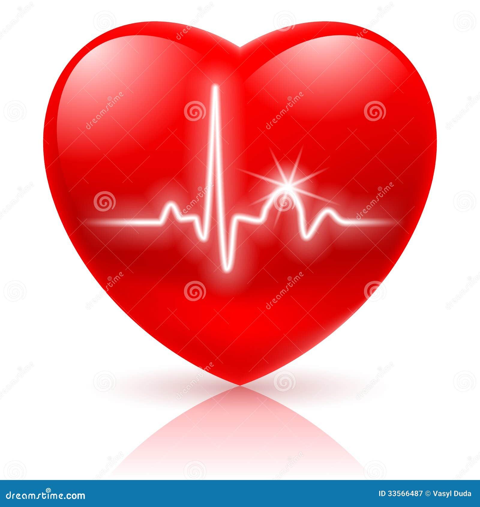 与心电图的心脏.图片