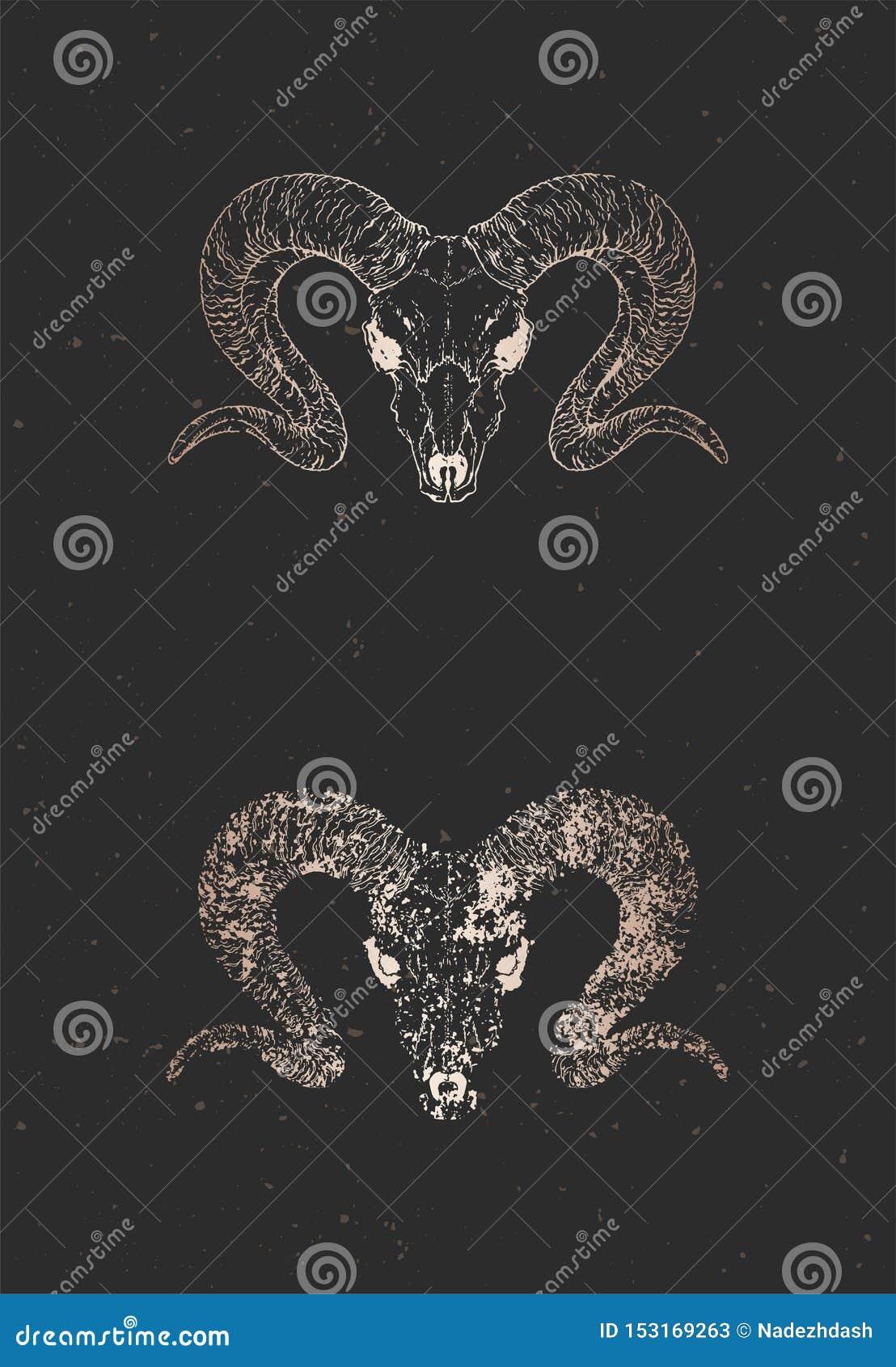 与手拉的狂放的公羊头骨两个变形的传染媒介例证在黑背景的 金子剪影和等高与难看的东西