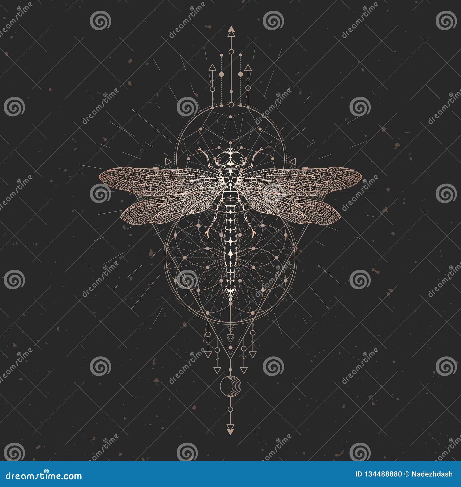 与手拉的蜻蜓的传染媒介例证和在黑葡萄酒背景的神圣的几何标志 抽象神秘的标志 金子