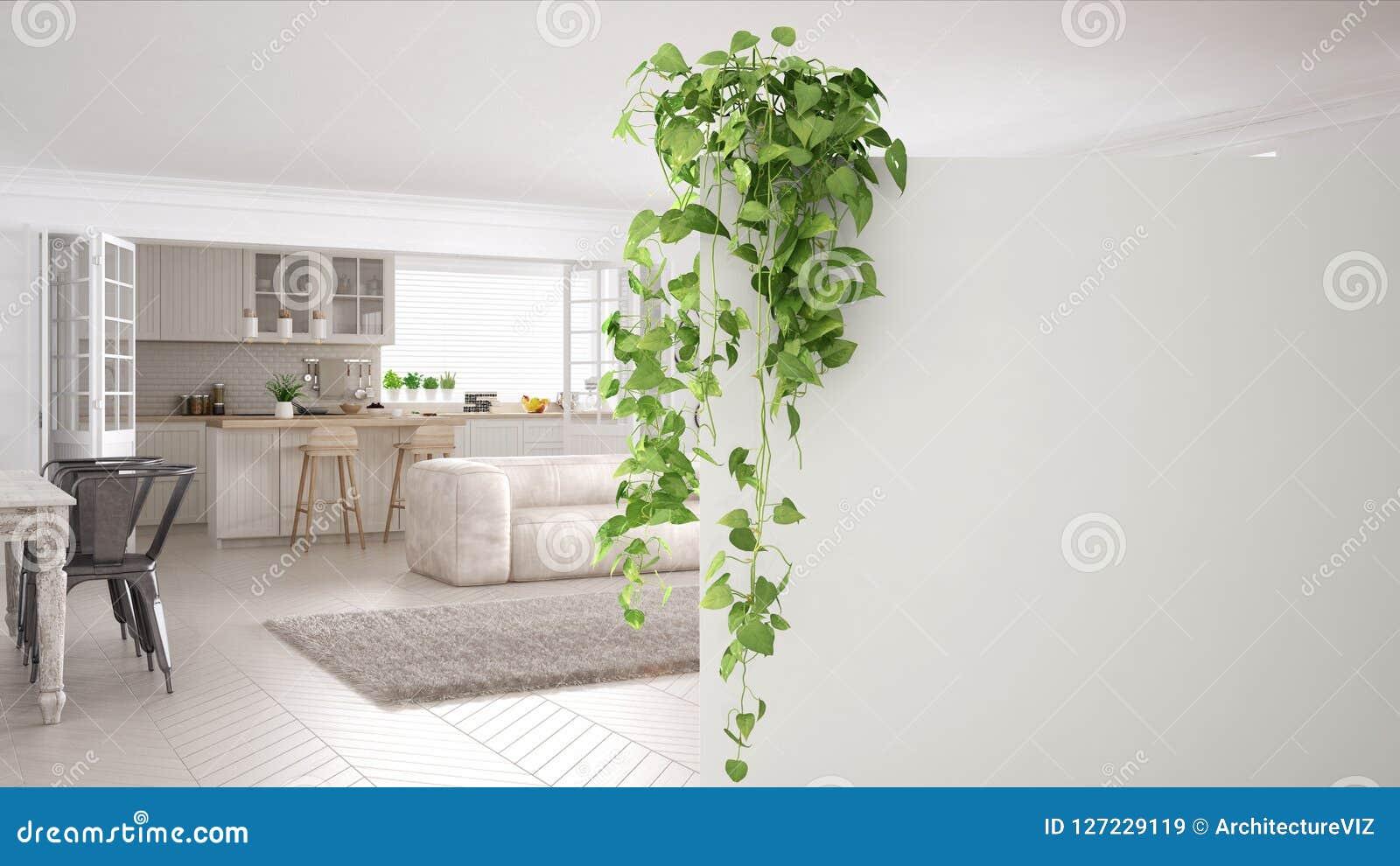 与拷贝空间,有盆的植物的,当代白色客厅前景白色墙壁的绿色室内设计概念背景