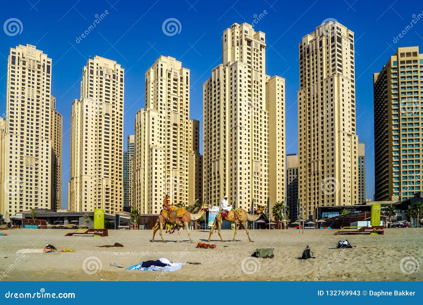 与摩天大楼和骆驼的迪拜地平线在海滩