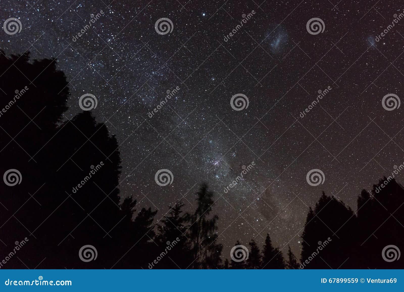 与数百万星和银河的夜空在新西兰