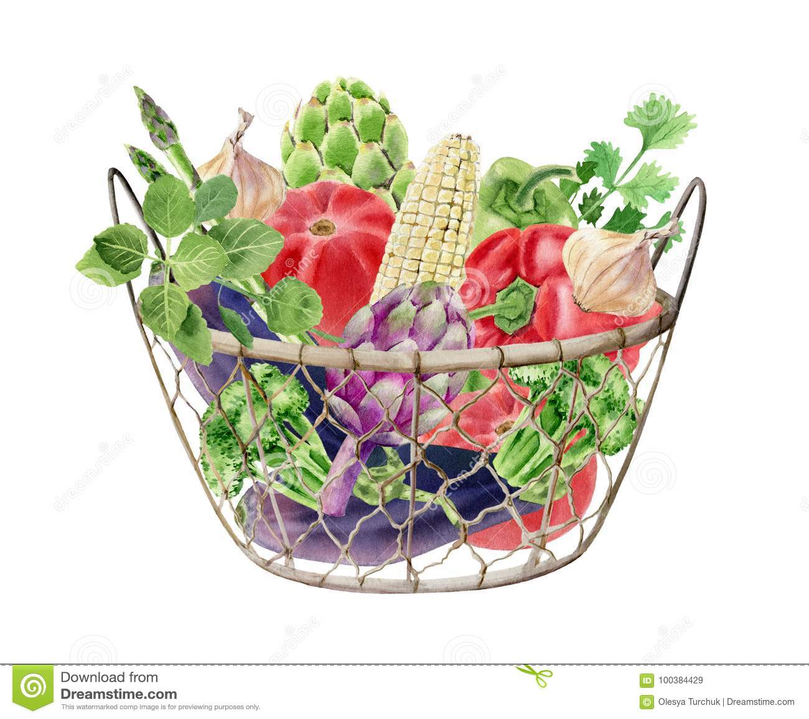与新鲜蔬菜的手画水彩clipart在箱子