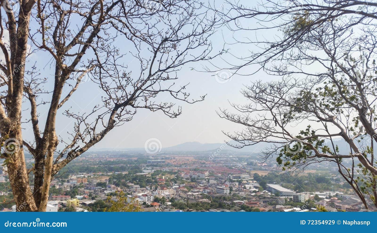 与普吉岛镇的树枝将从敲响了小山