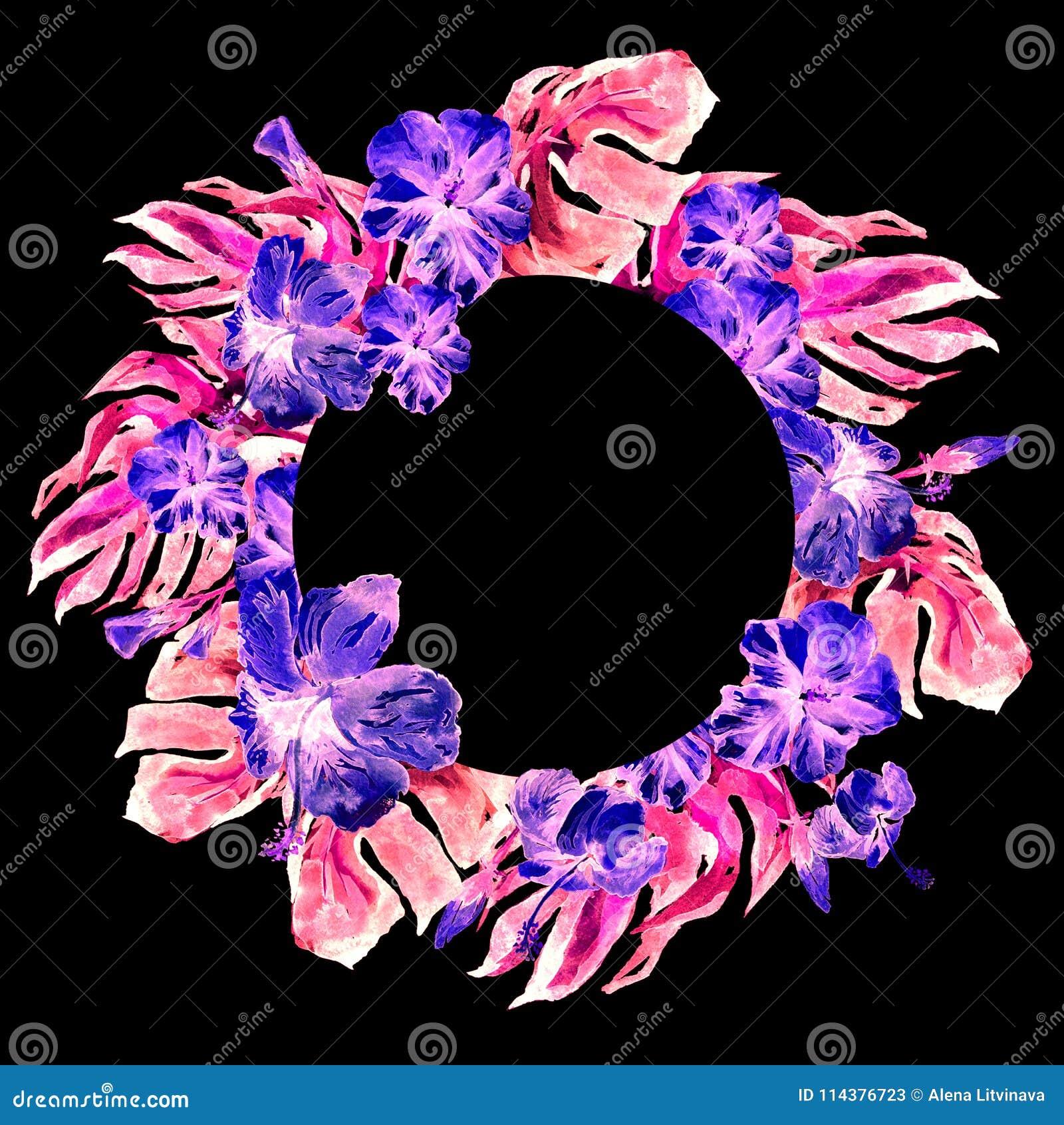 与木槿的热带圈子框架和与木槿的Monstera水彩手画热带夏天主题