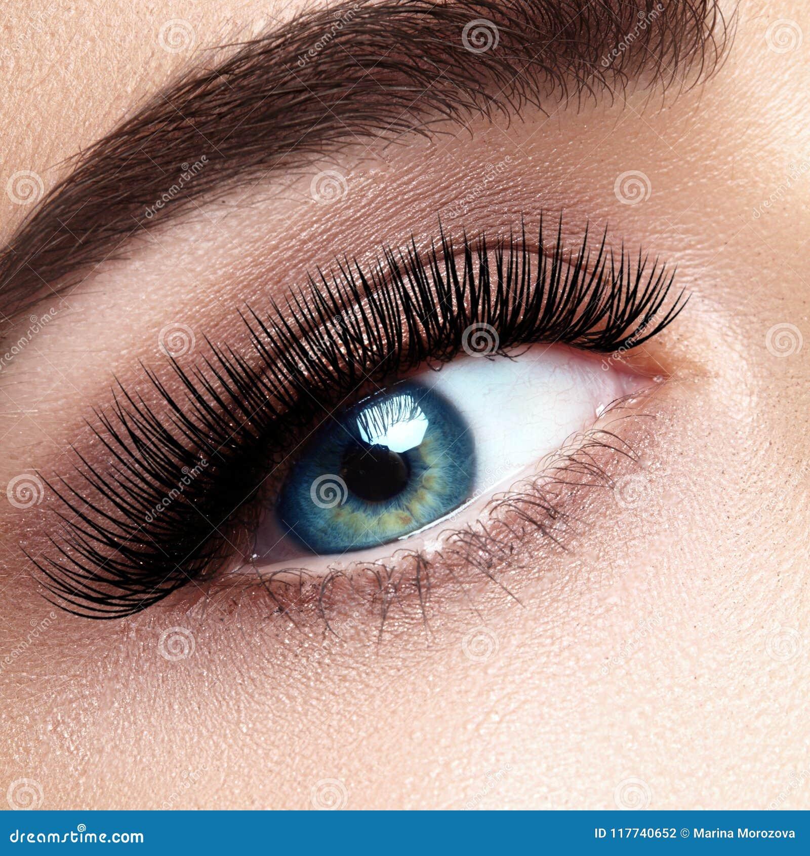 与极端长的睫毛的美丽的女性眼睛,黑划线员构成 完善的构成,长的鞭子 特写镜头时尚眼睛