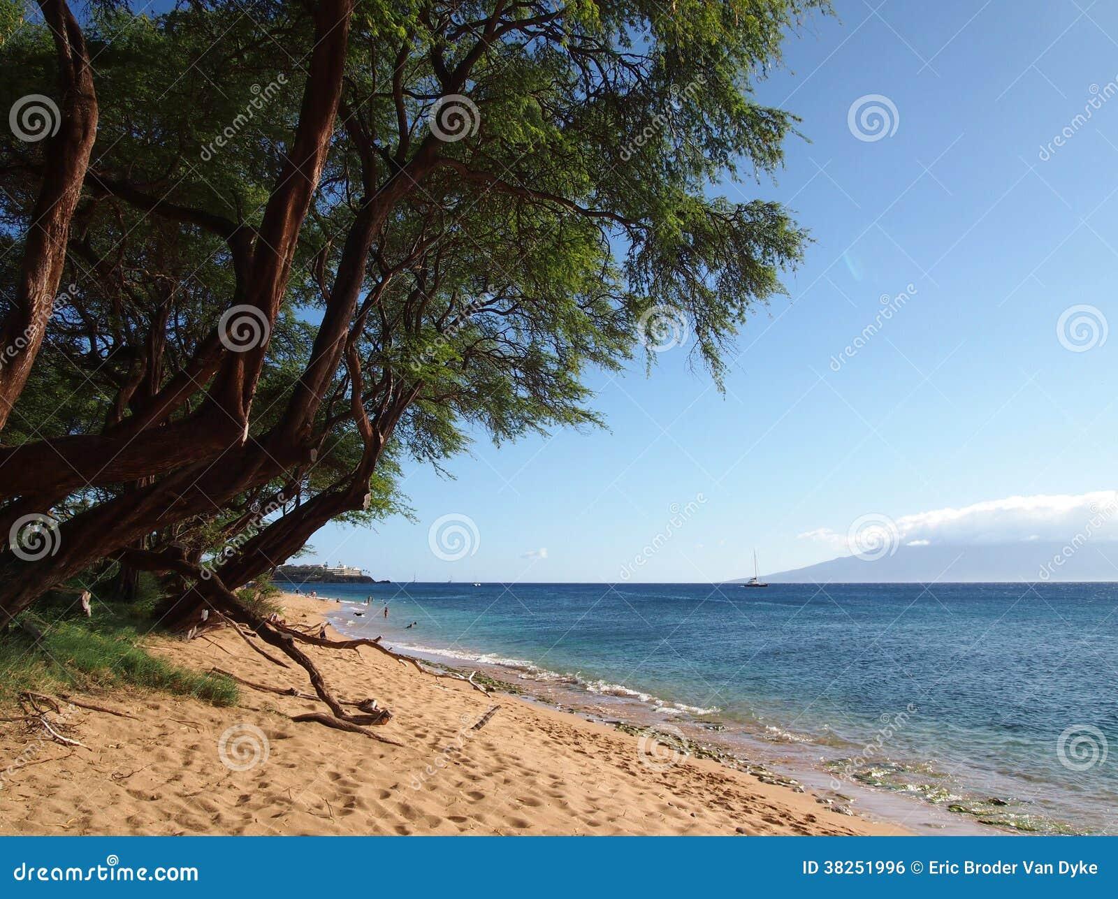 与柔和的波浪的Kaanapali海滩
