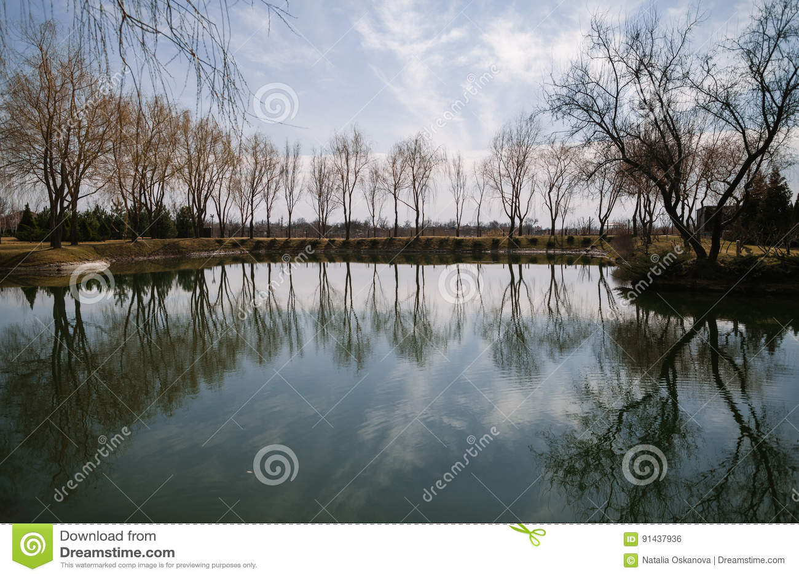 与树的湖lanscape