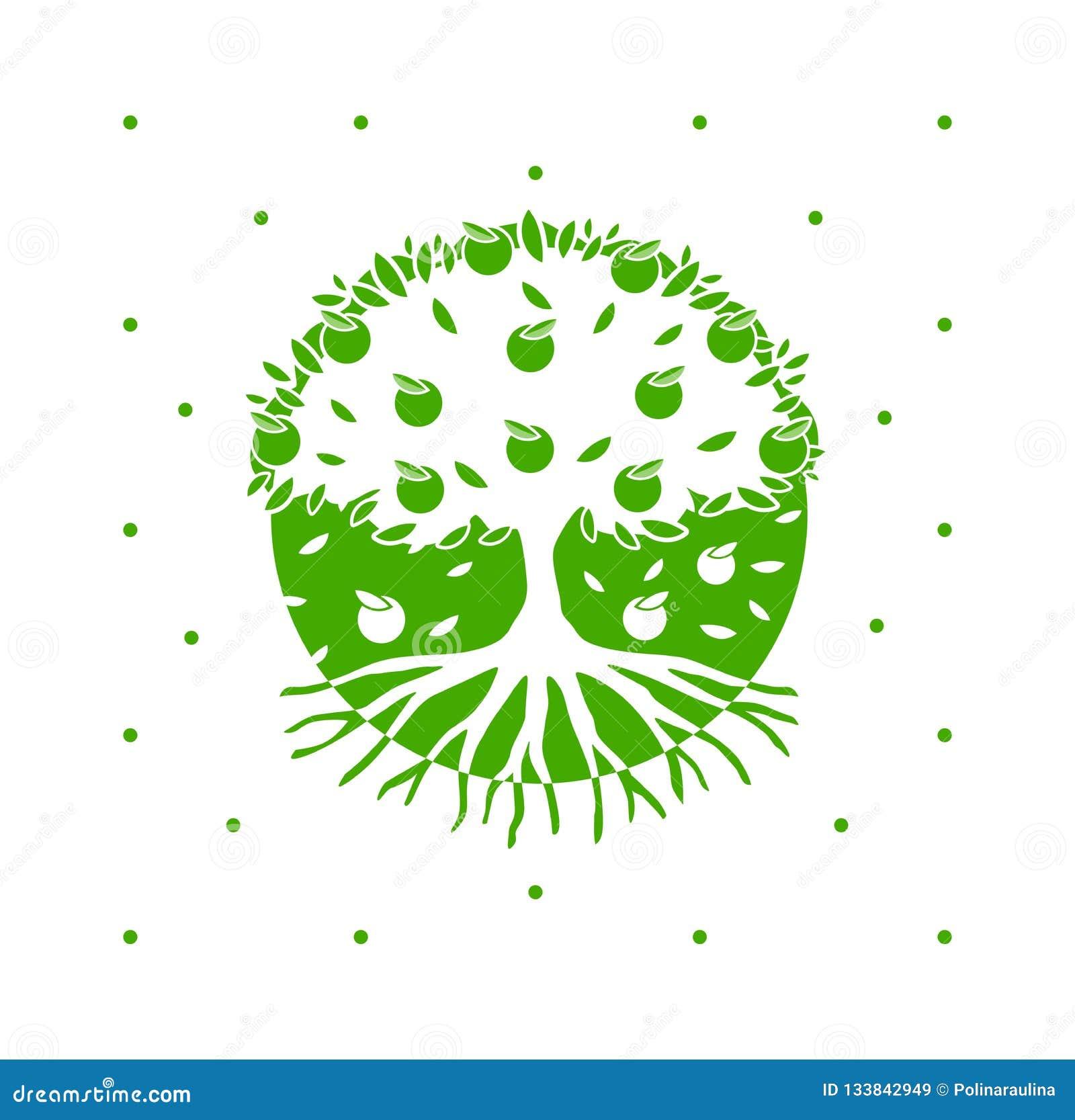 与根的绿色传染媒介苹果树