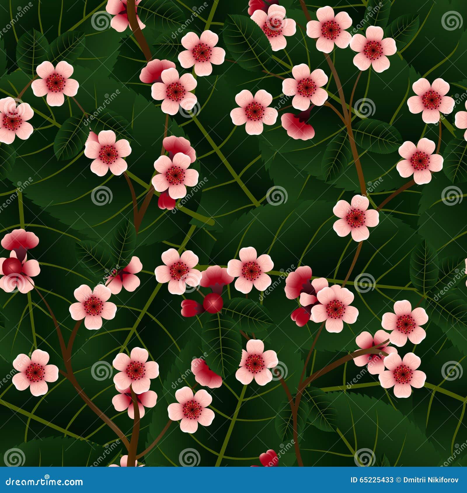 与桃红色樱桃花和叶子的无缝的样式