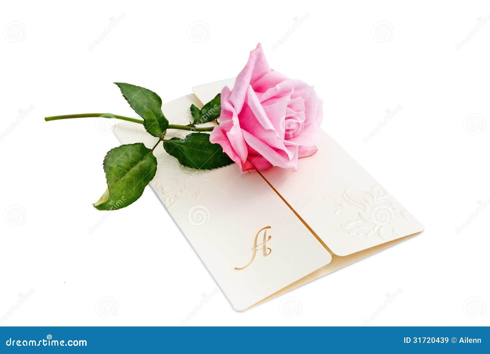 与桃红色玫瑰的信件在白色背景