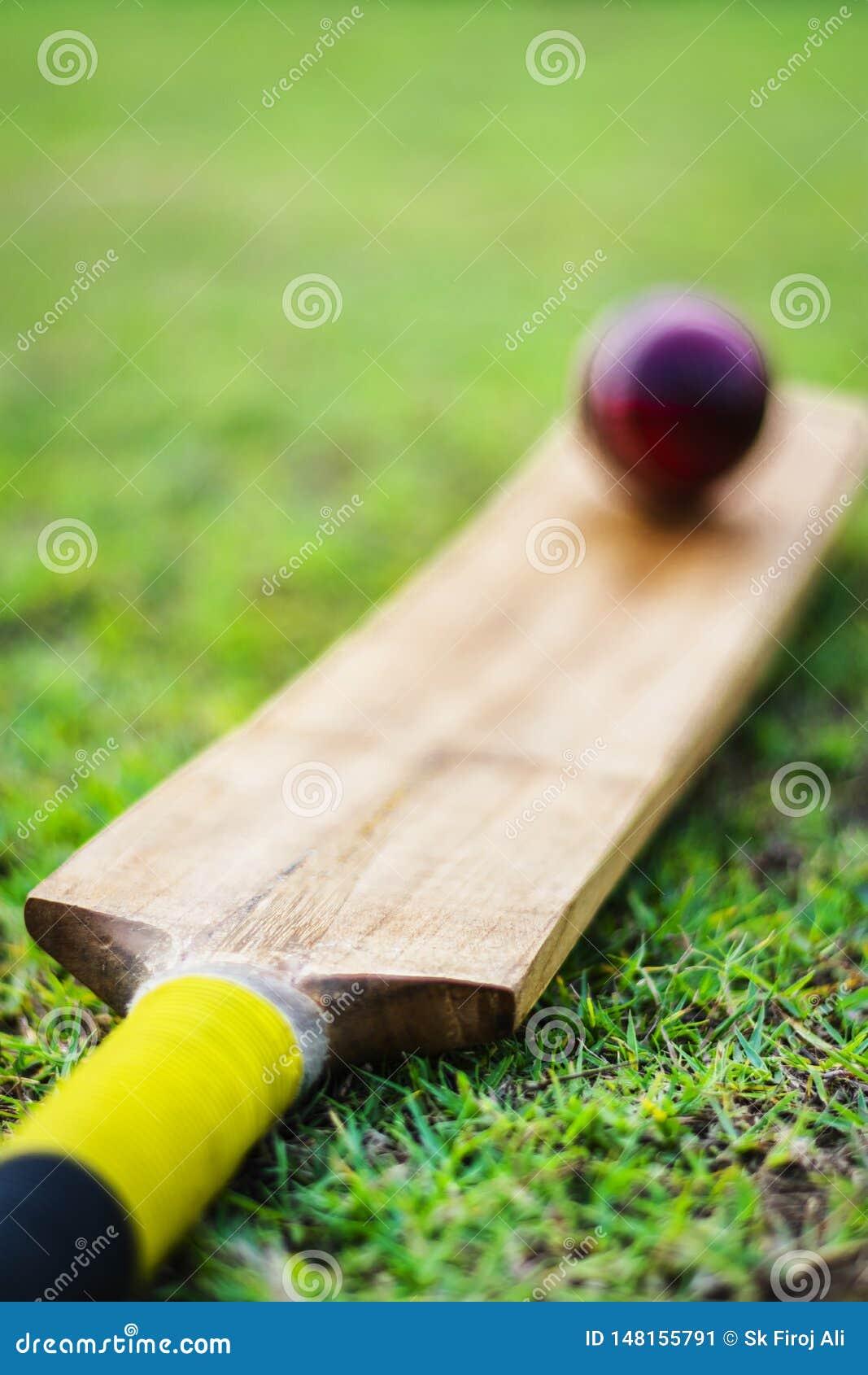 _红色cricket板球与棒在绿色操场