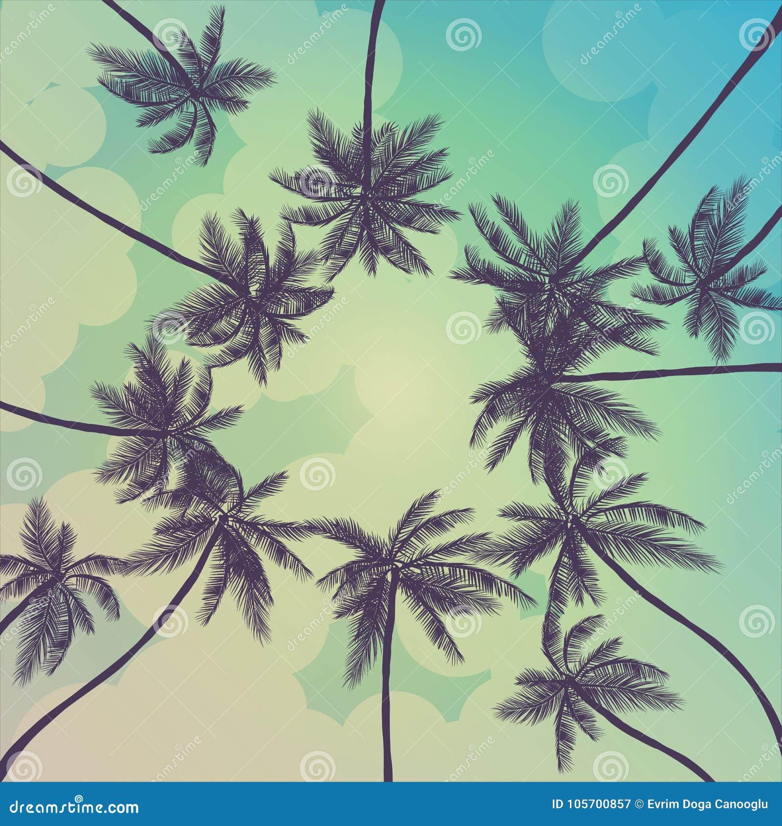 与棕榈、天空和日落的夏天热带背景 夏天招贴海报飞行物邀请卡片 夏令时