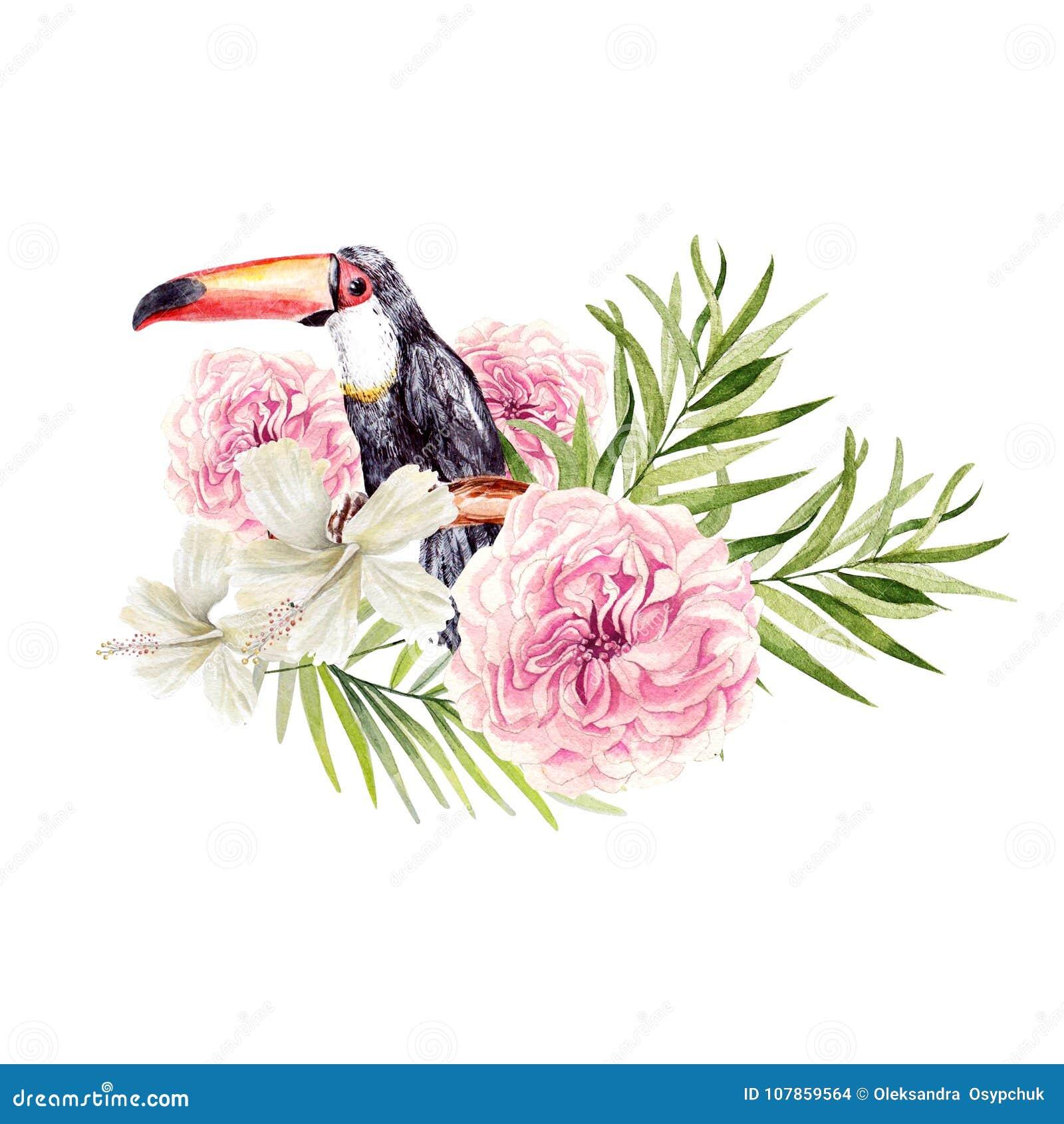 与棕榈树的鸟toucan和玫瑰的叶子,花和木槿的美丽的水彩花束图片