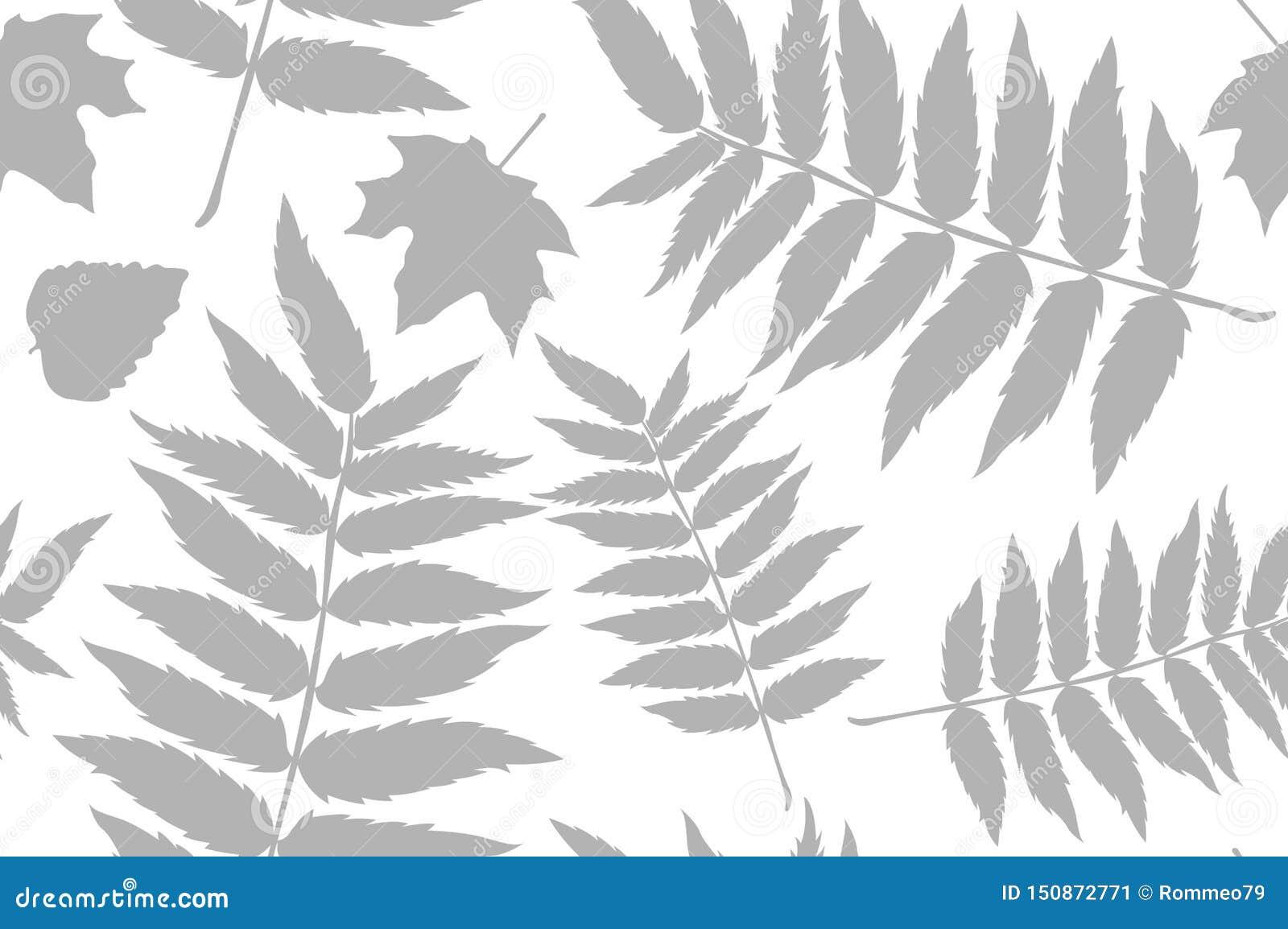 与橡子和秋天橡木叶子的无缝的样式在橙色,米黄,布朗和黄色 为墙纸,礼物纸,样式完善
