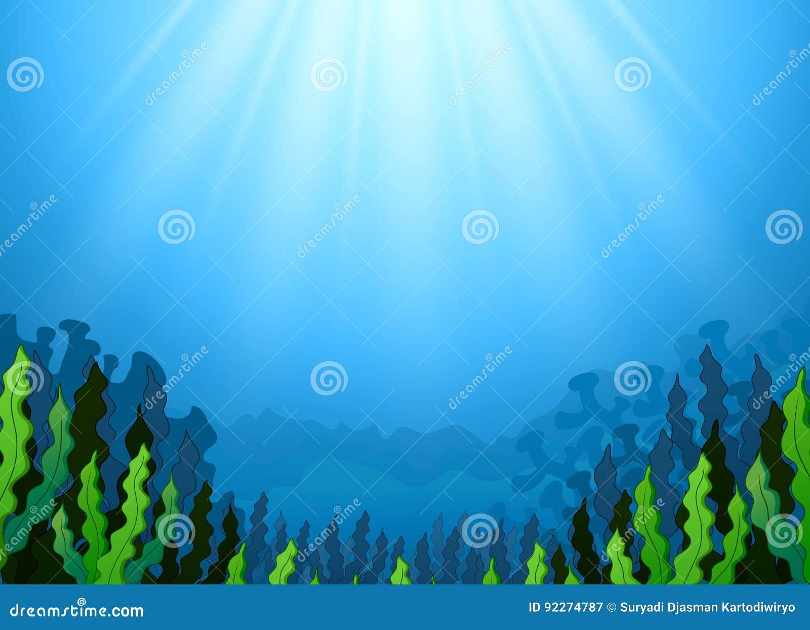 与海草的水下的场面