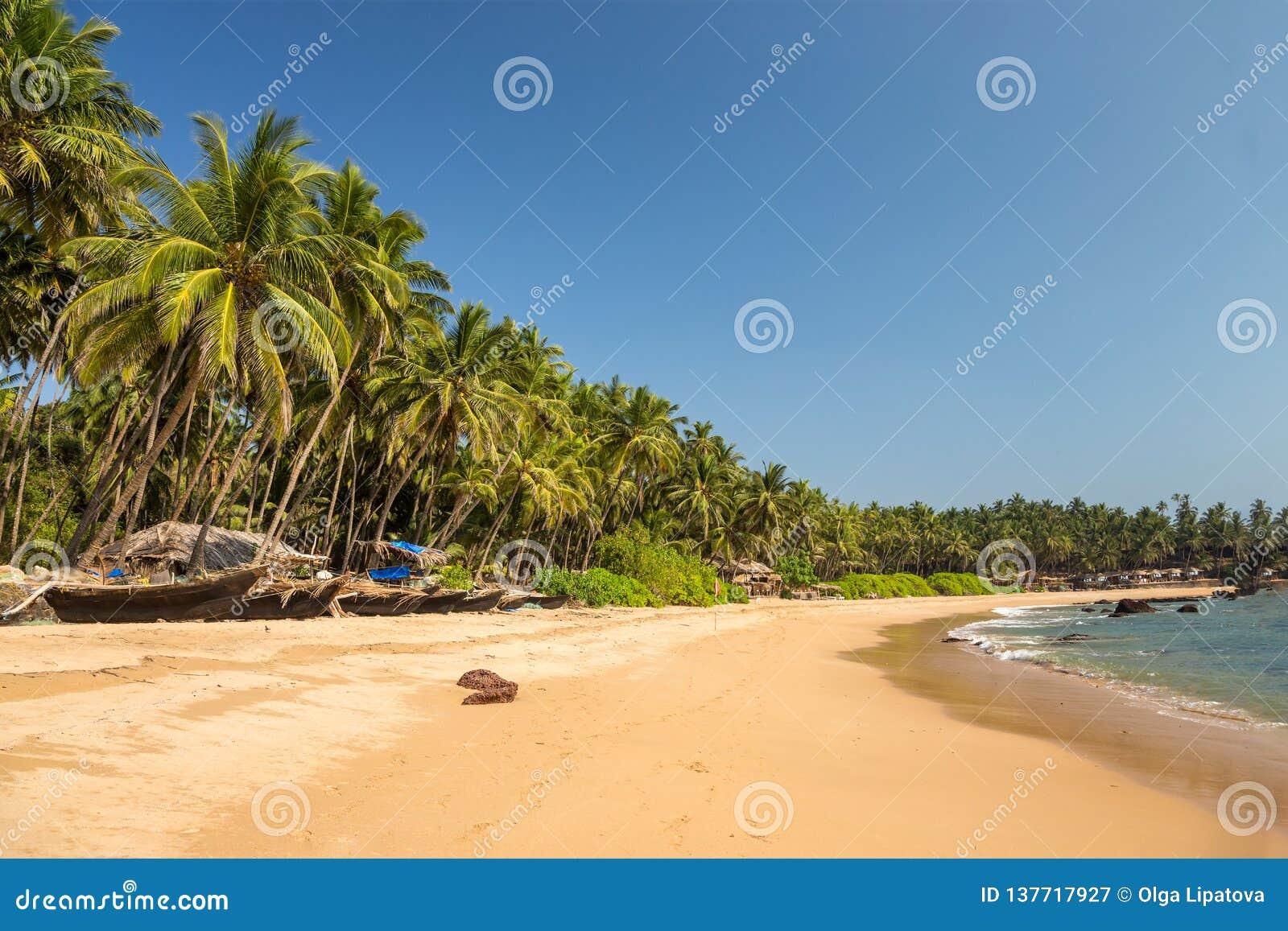 与渔船行的热带海滩