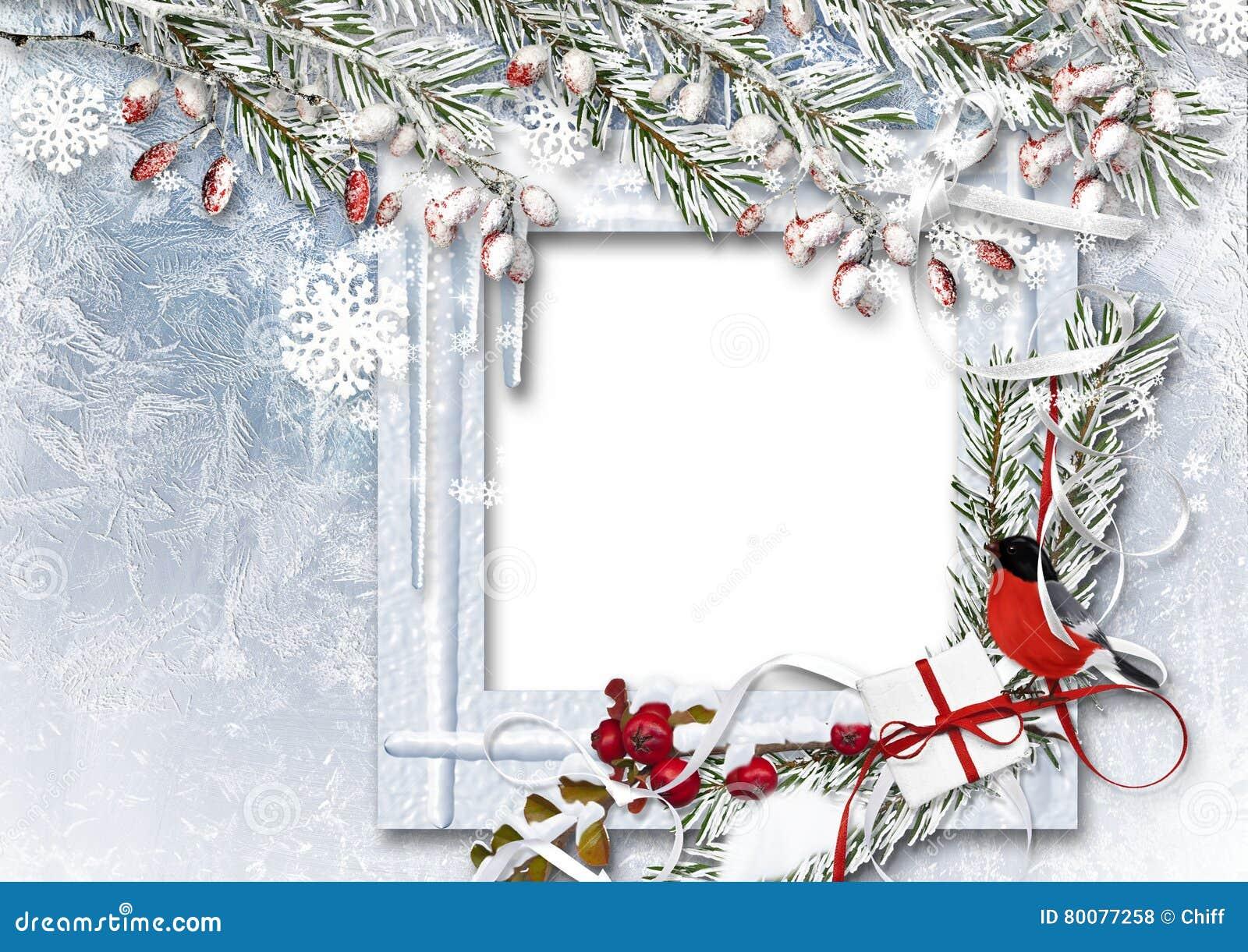 与照片框架、红腹灰雀、雪分支和红色莓果的圣诞节背景