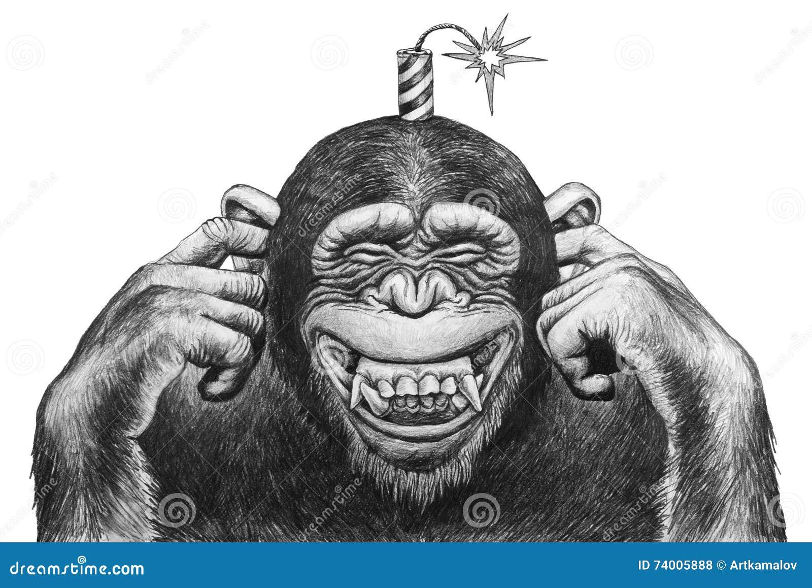 与爆竹的猴子