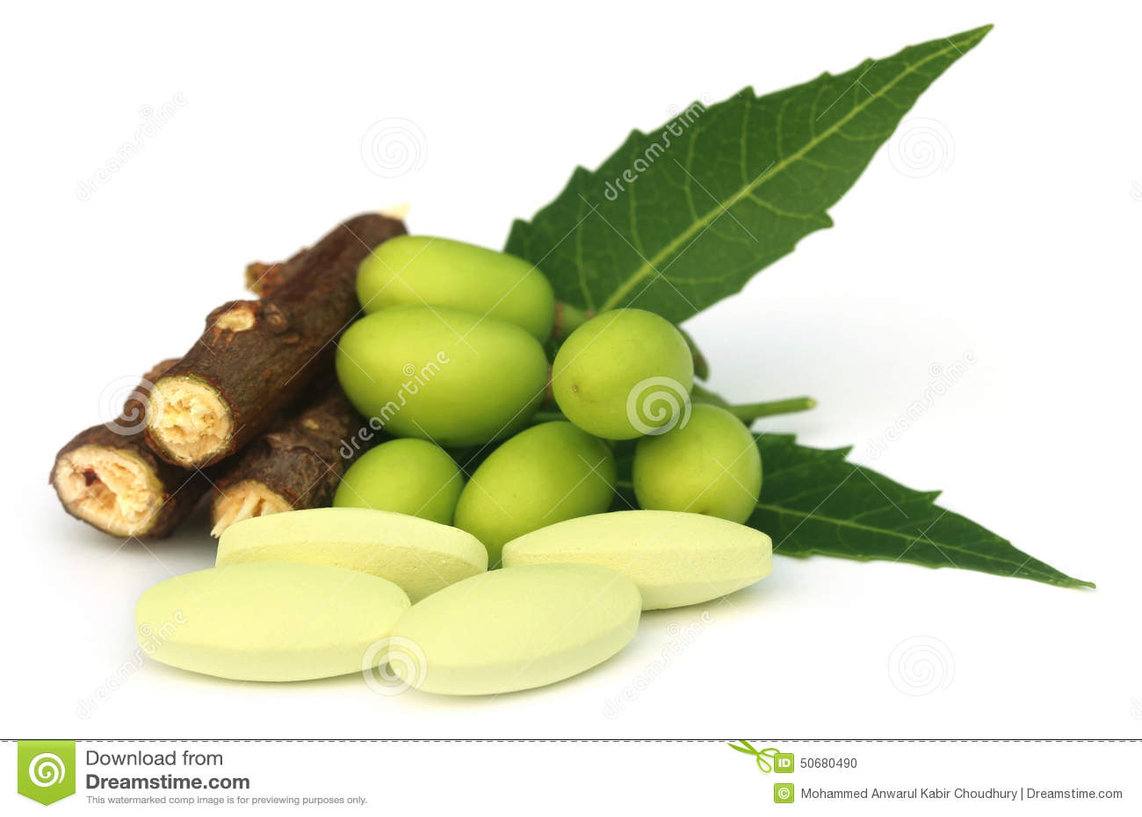 Download 与片剂的医药neem果子 库存照片. 图片 包括有 植被, 片剂, 自然, 健康, 解决, 查出, 草本 - 50680490