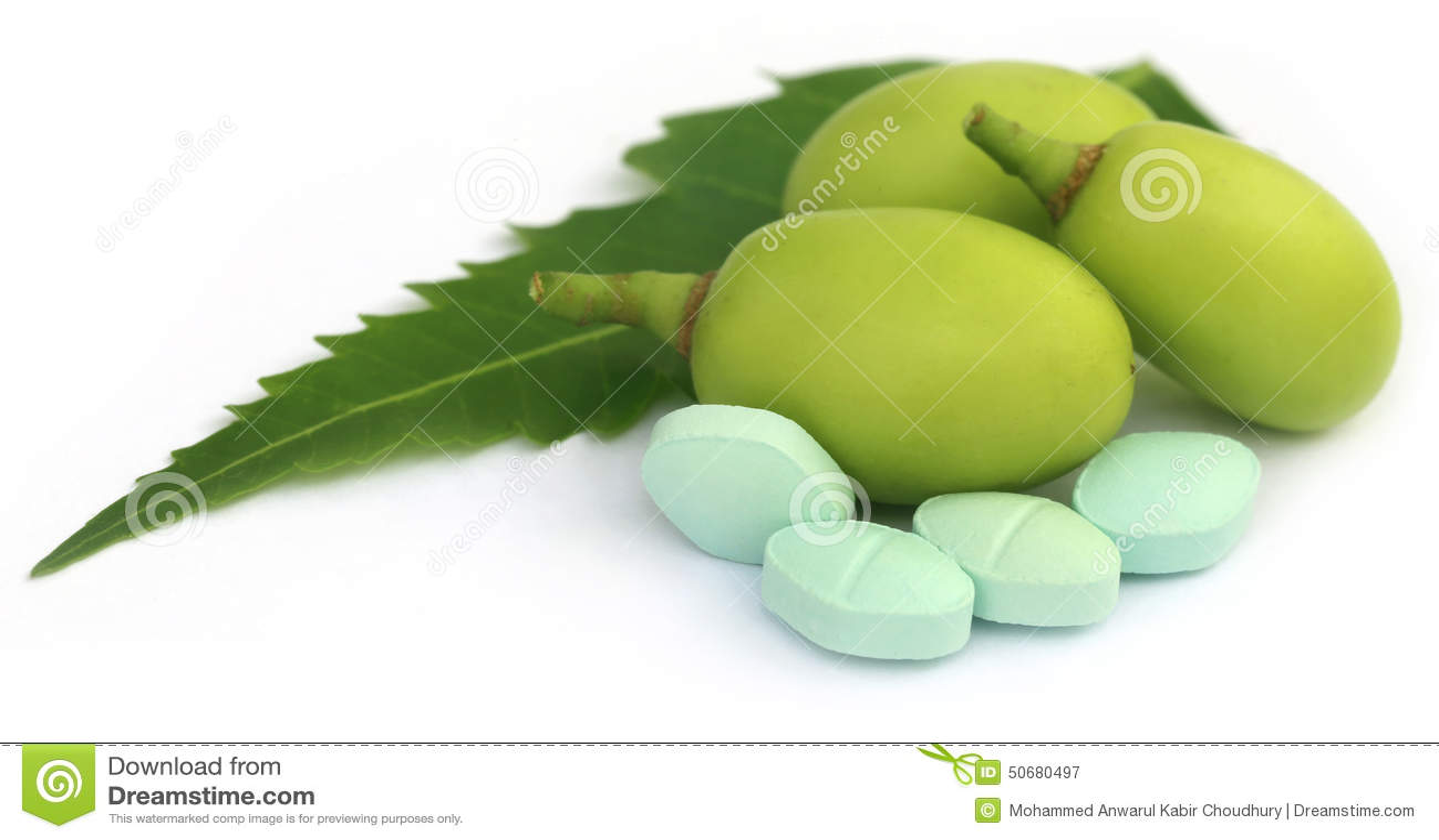 Download 与片剂的医药neem果子 库存图片. 图片 包括有 叶子, 健康, 愈合, ayurveda, 有机, 药片 - 50680497