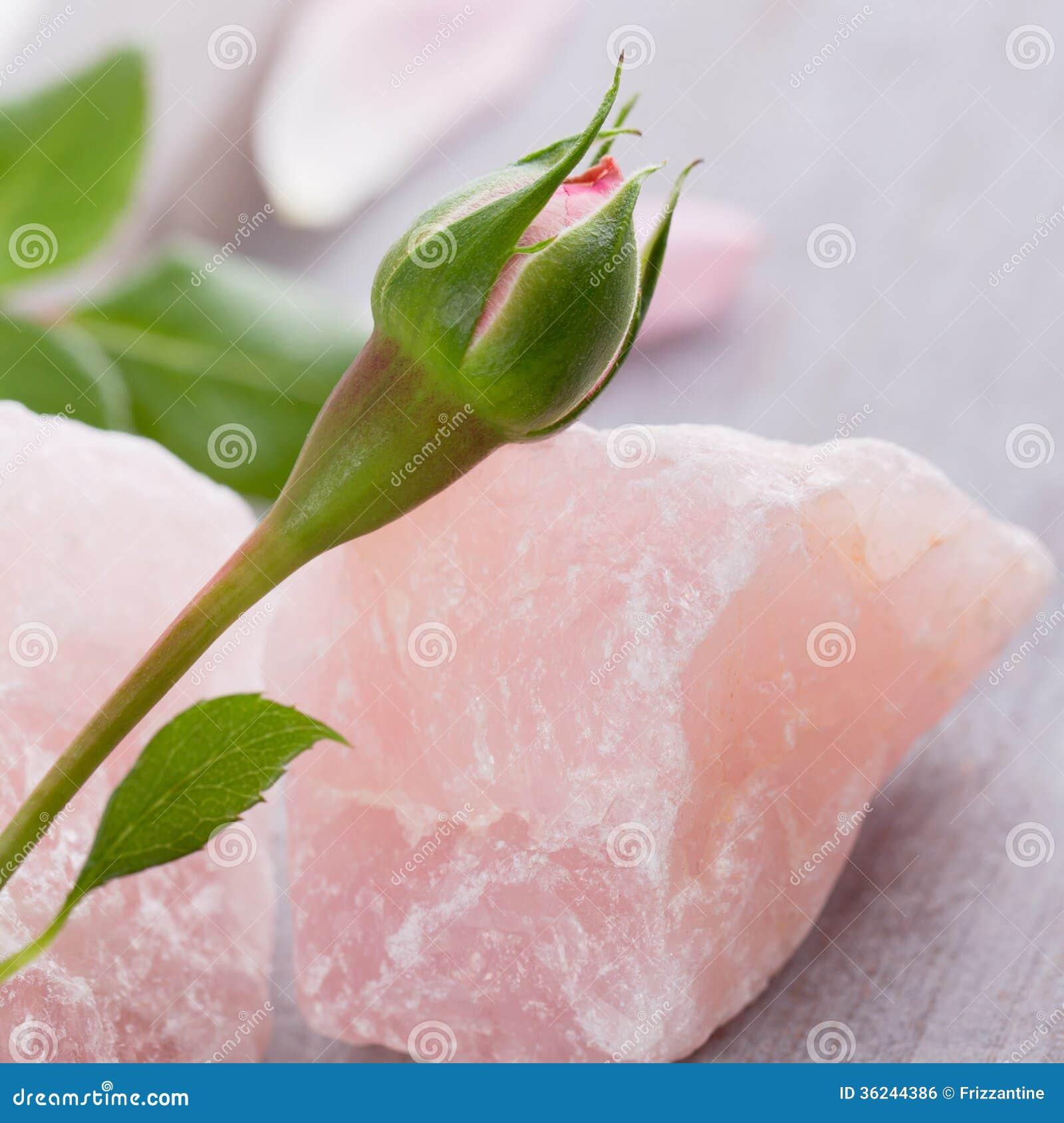与玫瑰花蕾的石英