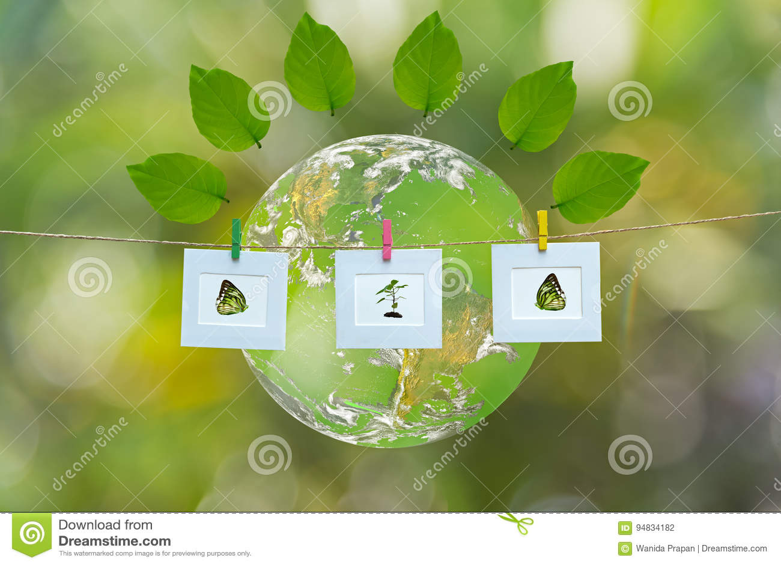 与环球框架自然和事假的绿色世界,绿色背景,