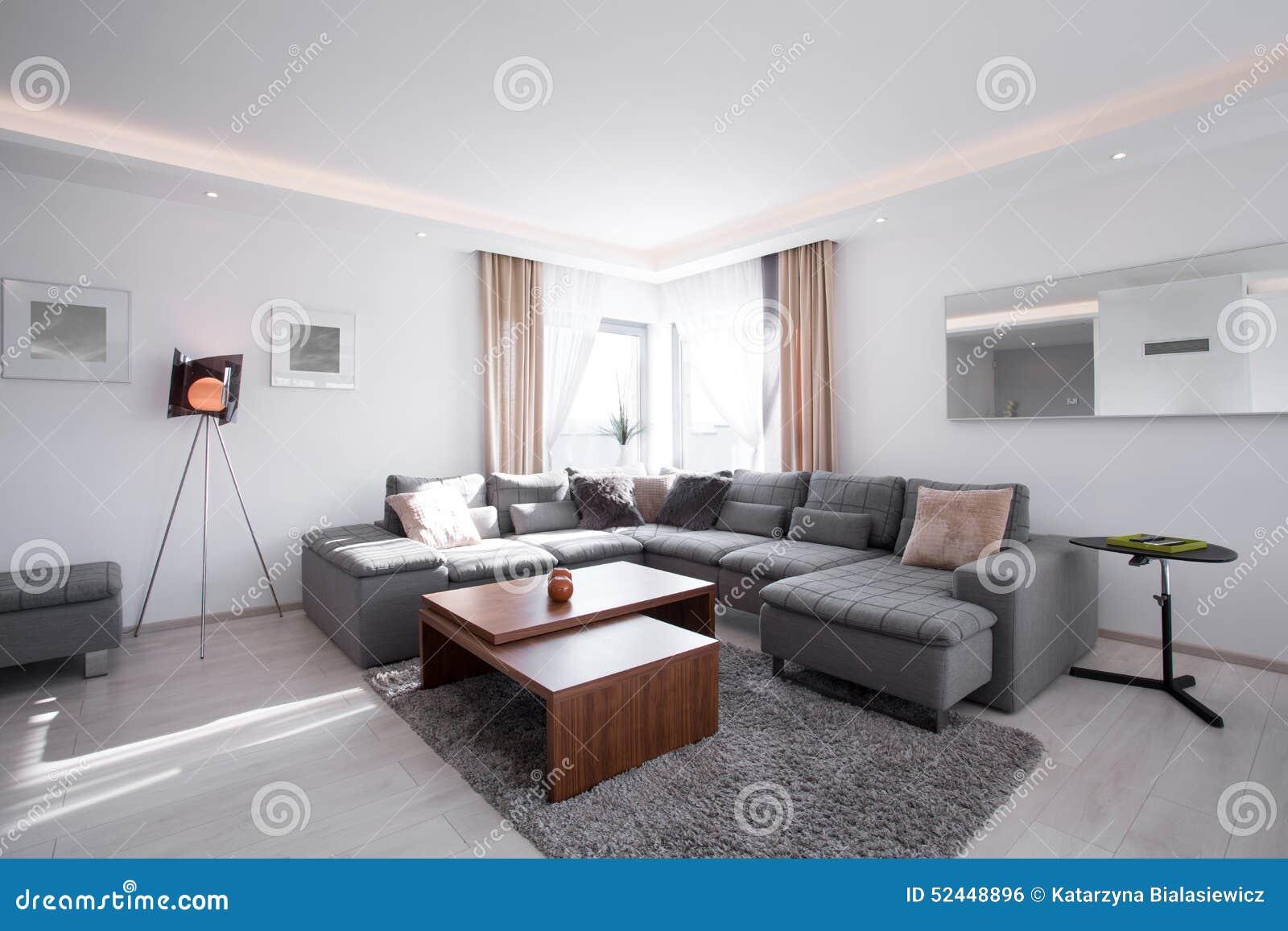 与现代家具的被设计的内部