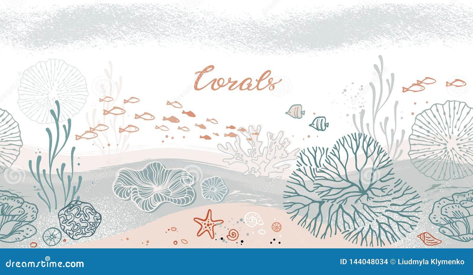 与珊瑚、海藻、鱼和海星的无缝的水平的样式