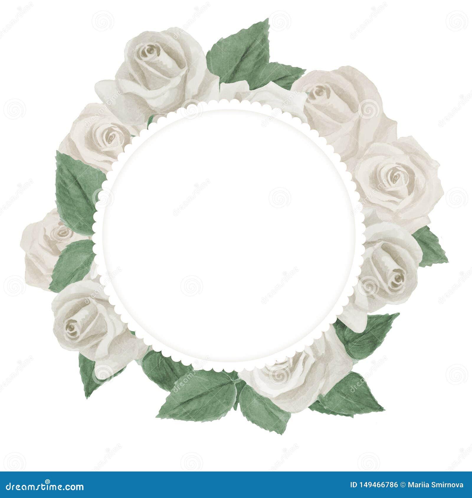 与白玫瑰的美丽的水彩卡片 o