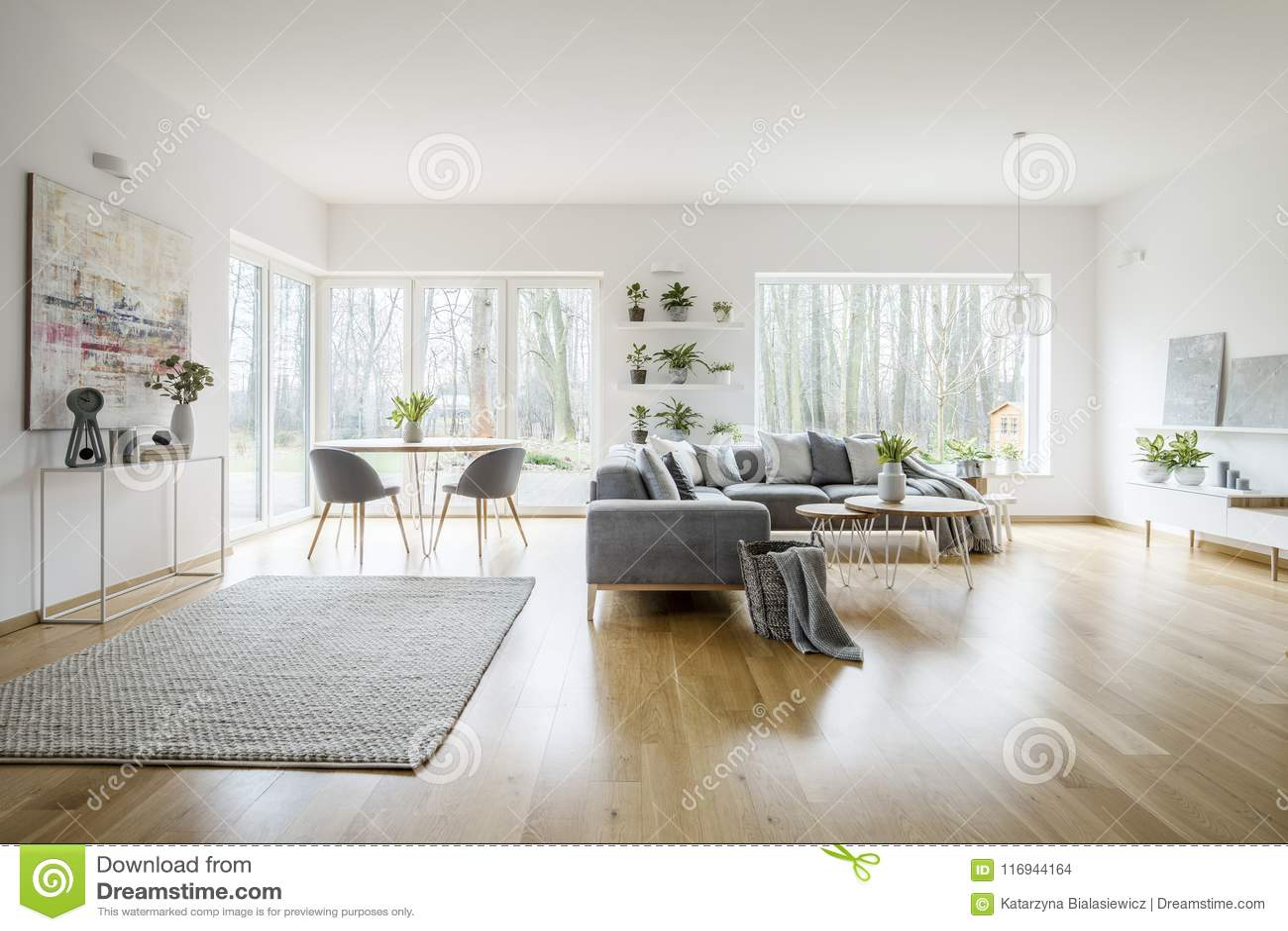 与窗口的白色典雅的客厅内部