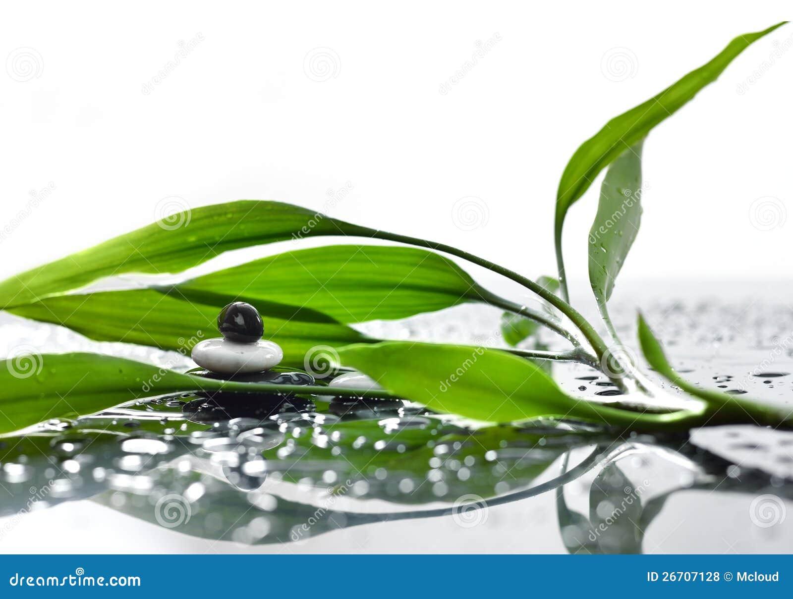 与竹子和水下落的亚洲eco背景.