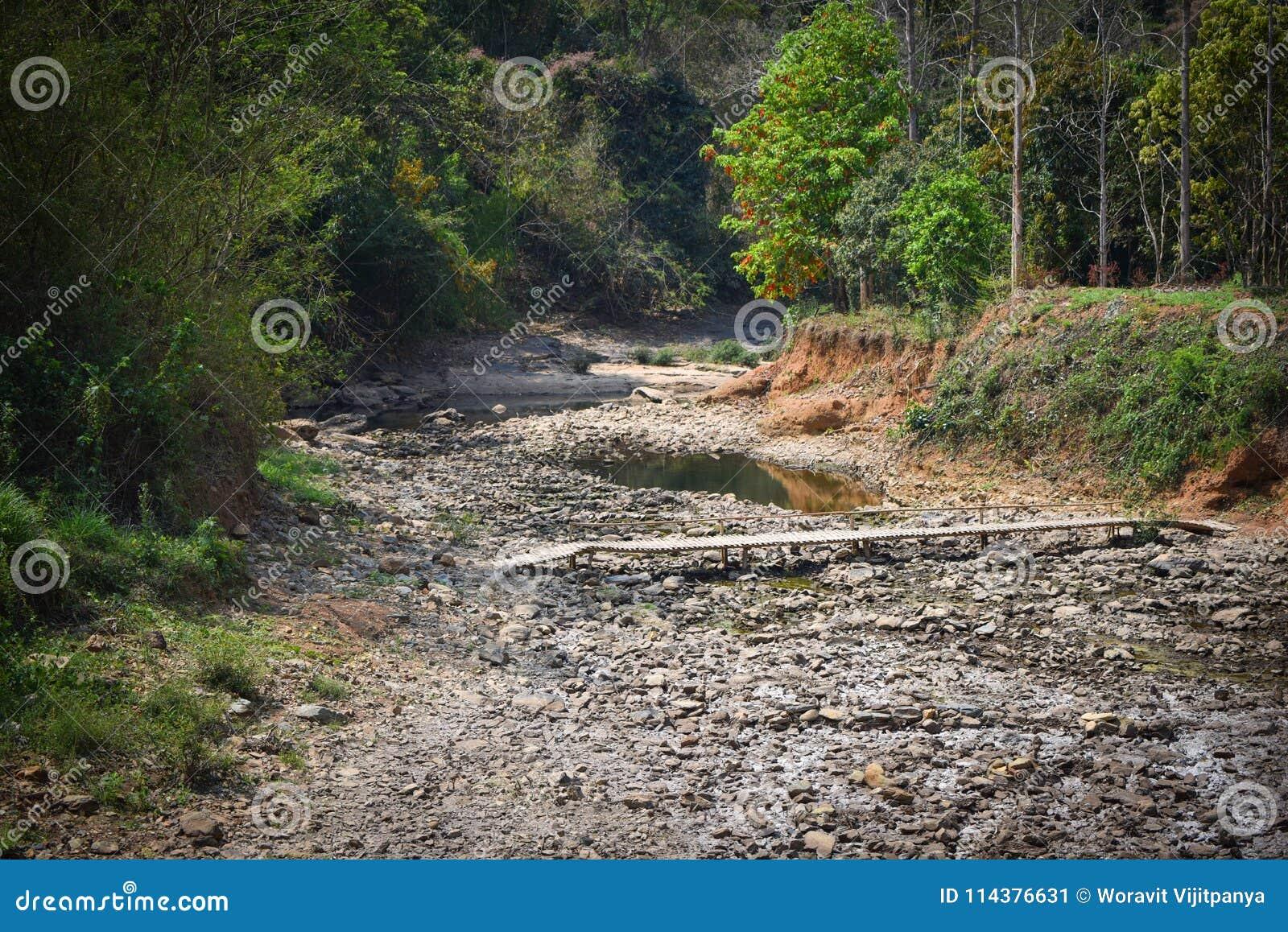 与竹桥梁的干燥石河床