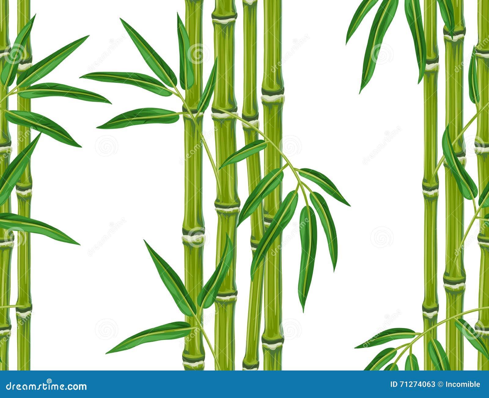 竹��b�ym~Z8{�����k�^ZJ~Y_与竹植物和叶子的无缝的样式 背景被做,不用截去的面具 易使用为背景