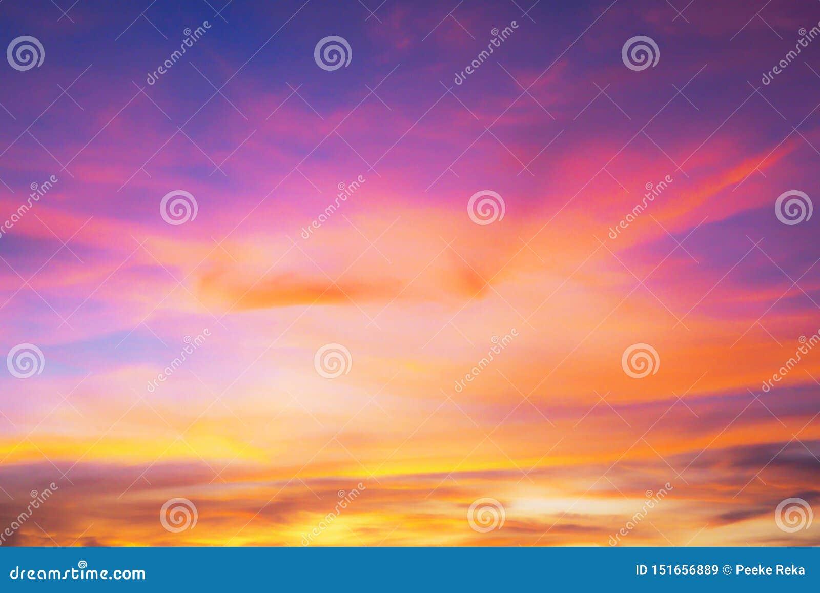 与紫色天空的背景和在日落的黑暗的桃红色